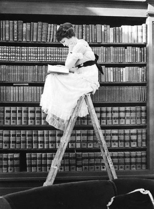 Femme Livre Bibliothèque