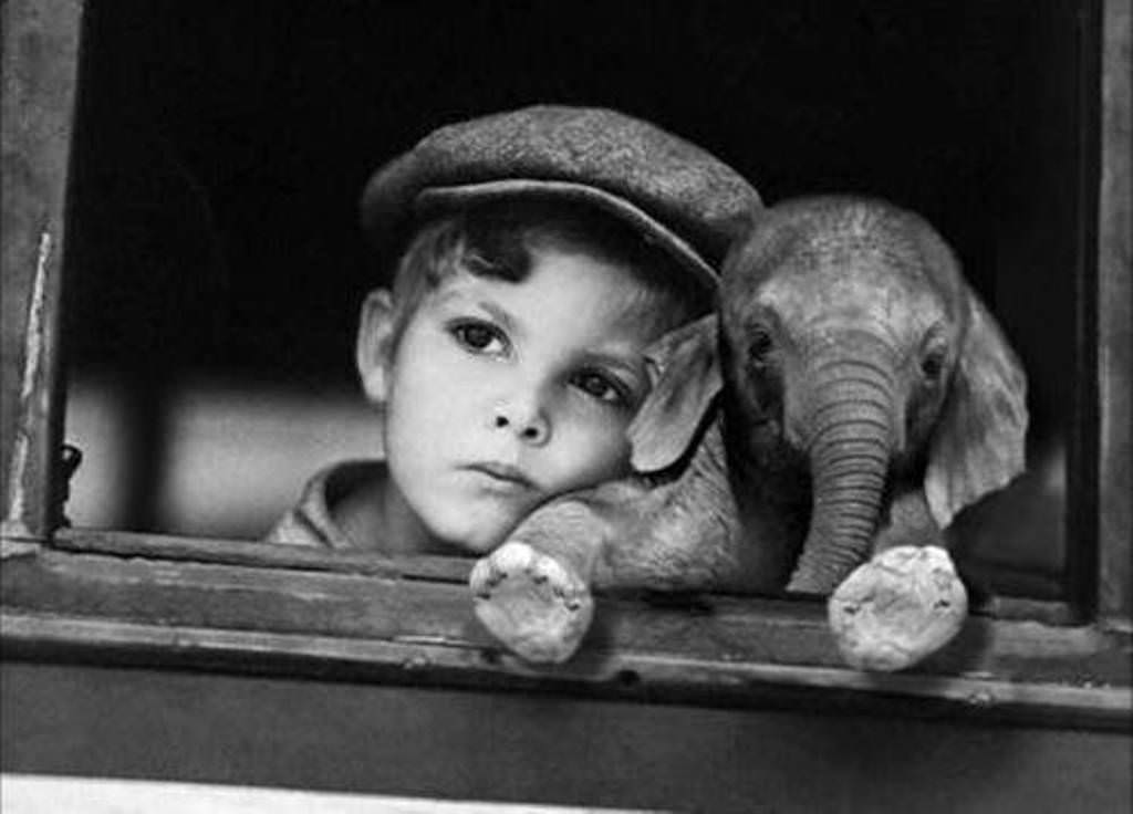 L'enfant et l'elephanteau. A children with an young elephant.