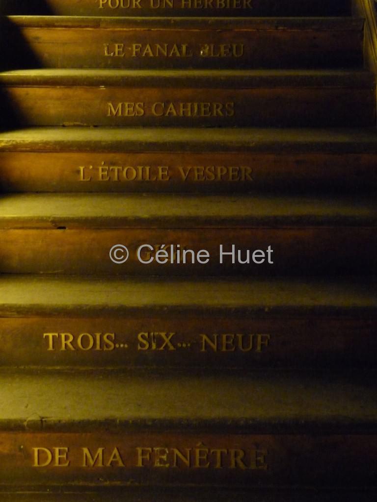 Musée Colette de Saint Sauveur en Puisaye (Yonne, Bourgogne)...