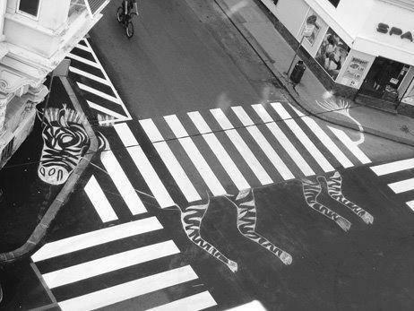 Passage piétons Zèbre Photo Noir et Blanc