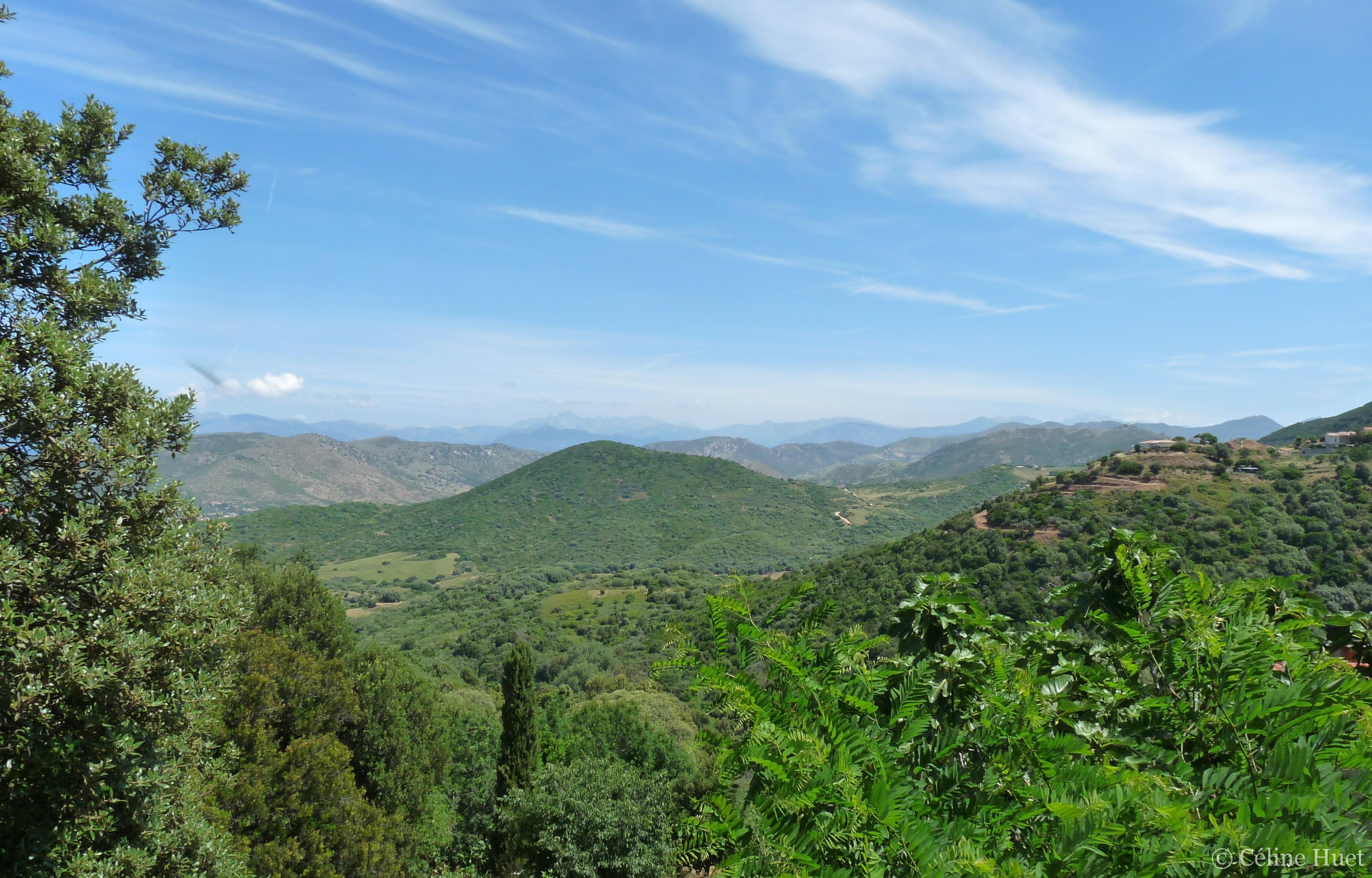 Vue de Villanova Corse du Sud France
