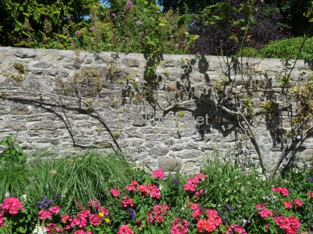 Jardin anglais Dinan Bretagne
