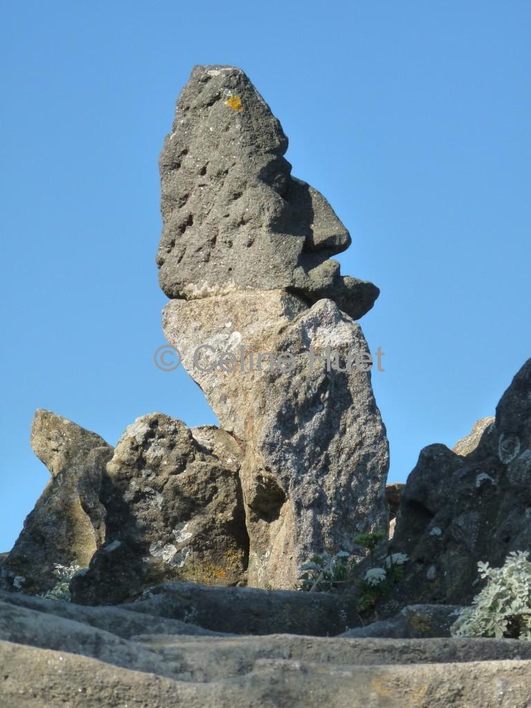 Les rochers sculptés de Rothéneuf Bretagne
