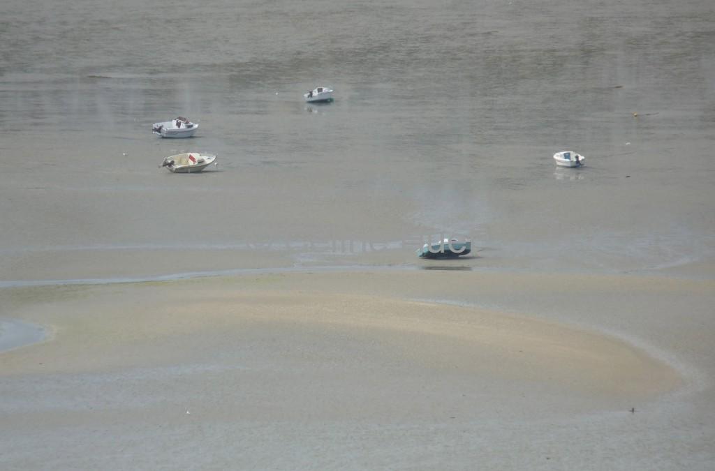 Marée basse Baie de Saint Brieuc vue de la Pointe du Roselier