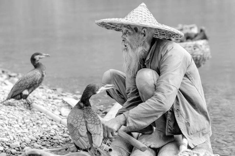 """""""On commence à vieillir quand on finit d'apprendre"""" (proverbe japonais)..."""