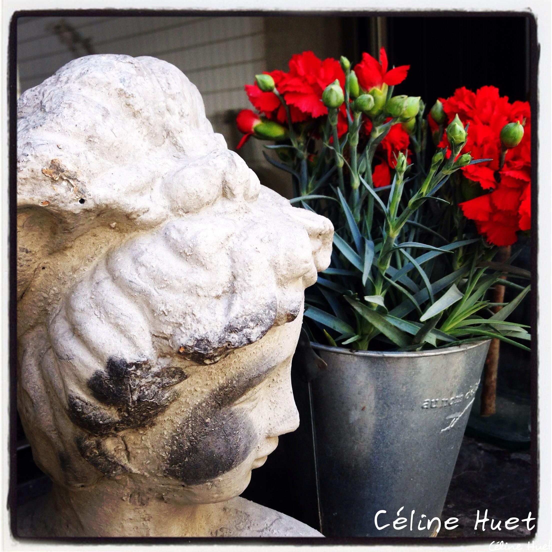 """""""Toutes les fleurs de l'avenir sont dans les semences d'aujourd'hui"""" (Proverbe chinois)..."""