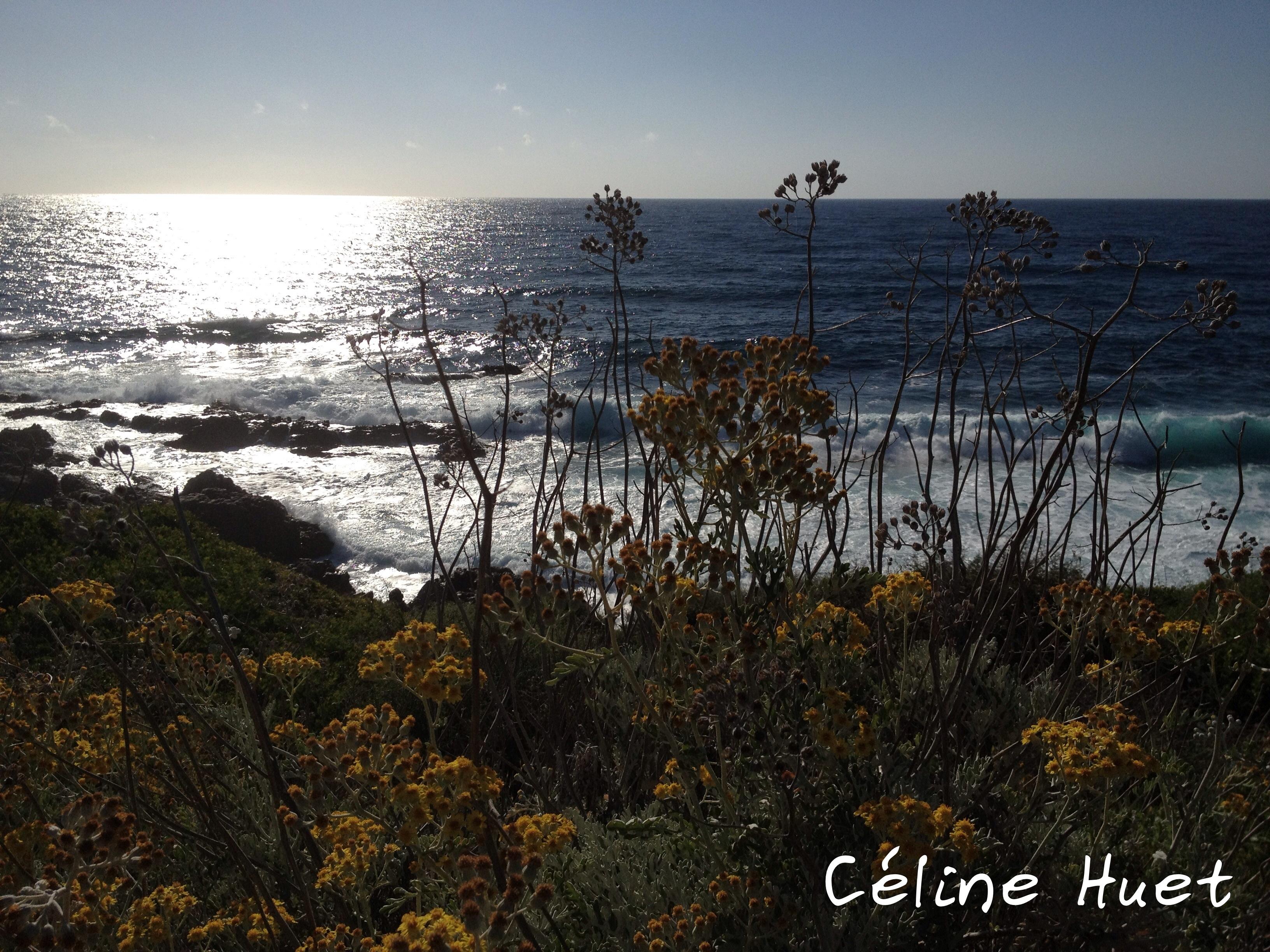 """""""La nature est éternellement jeune, belle et généreuse. Elle possède le secret du bonheur, et nul n'a su le lui ravir"""" (George Sand)..."""