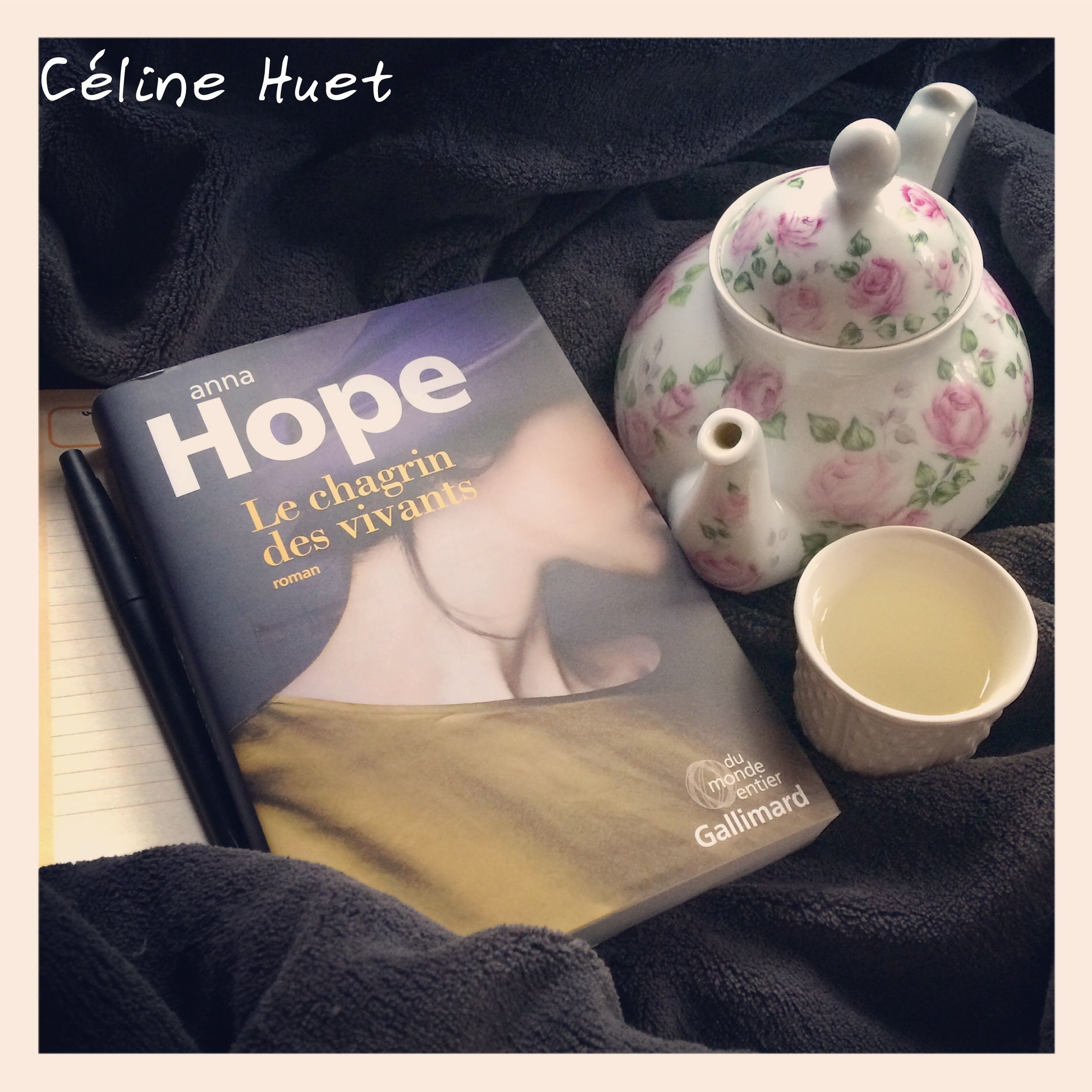 Le chagrin des vivants Anna Hope