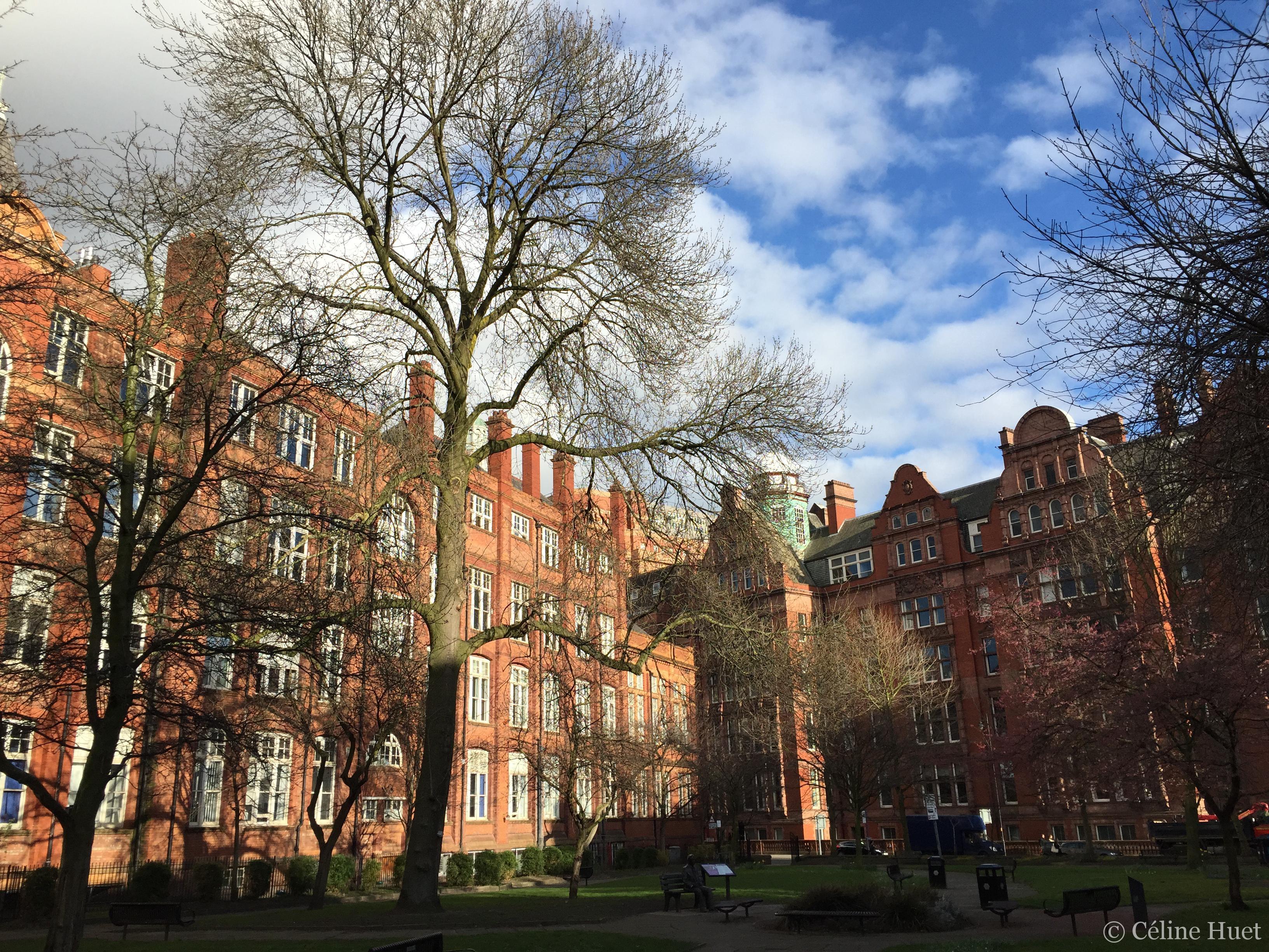 Sackville Gardens Manchester Royaume Uni