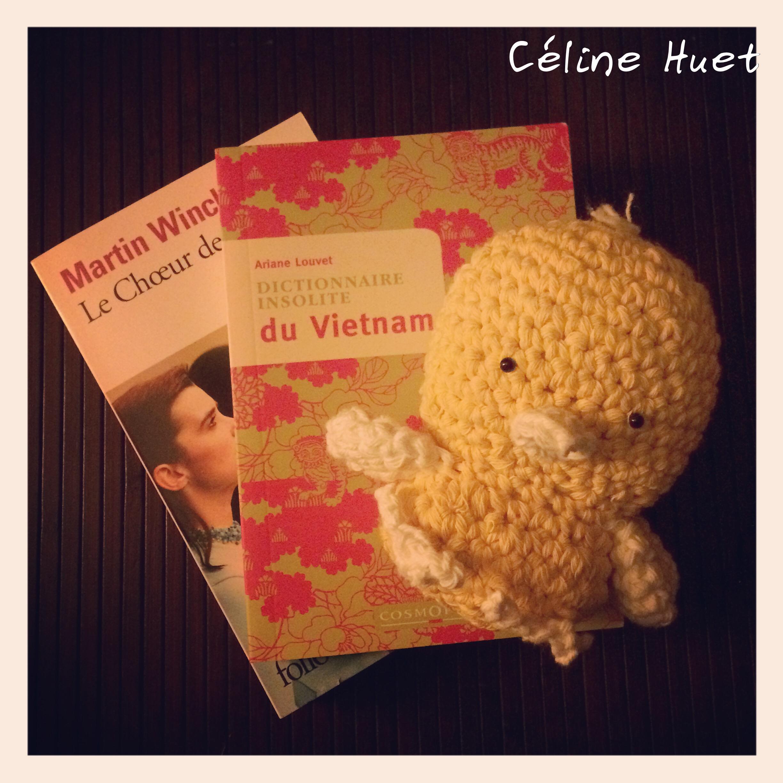 Le choeur des femmes Martin Winckler Dictionnaire insolite du Vietnam Crochet Coco