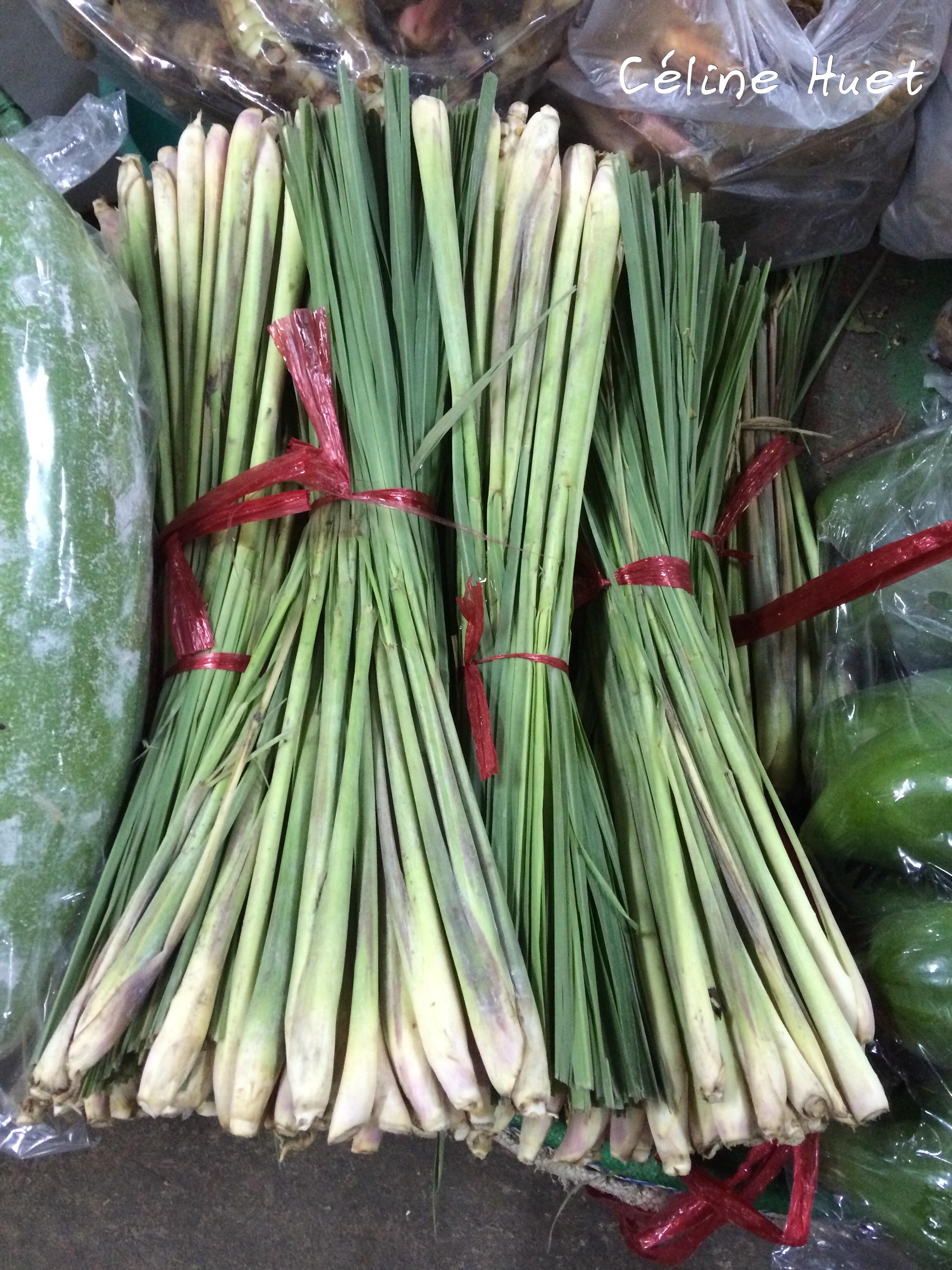 Citronnelle Lemongrass Flowers Market Bangkok Thailand Asia