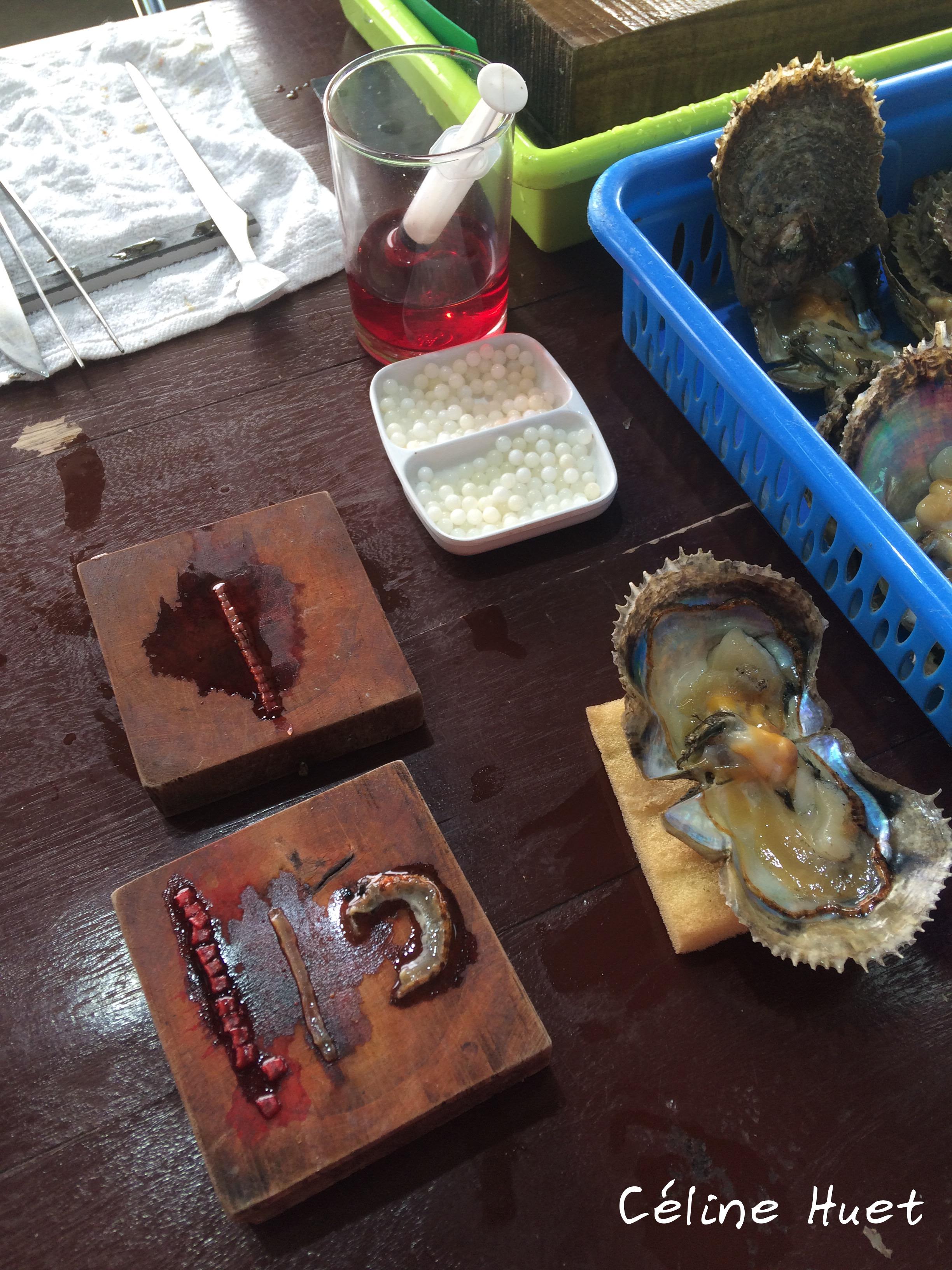 Legend Pearl Farm Vietnam Asia