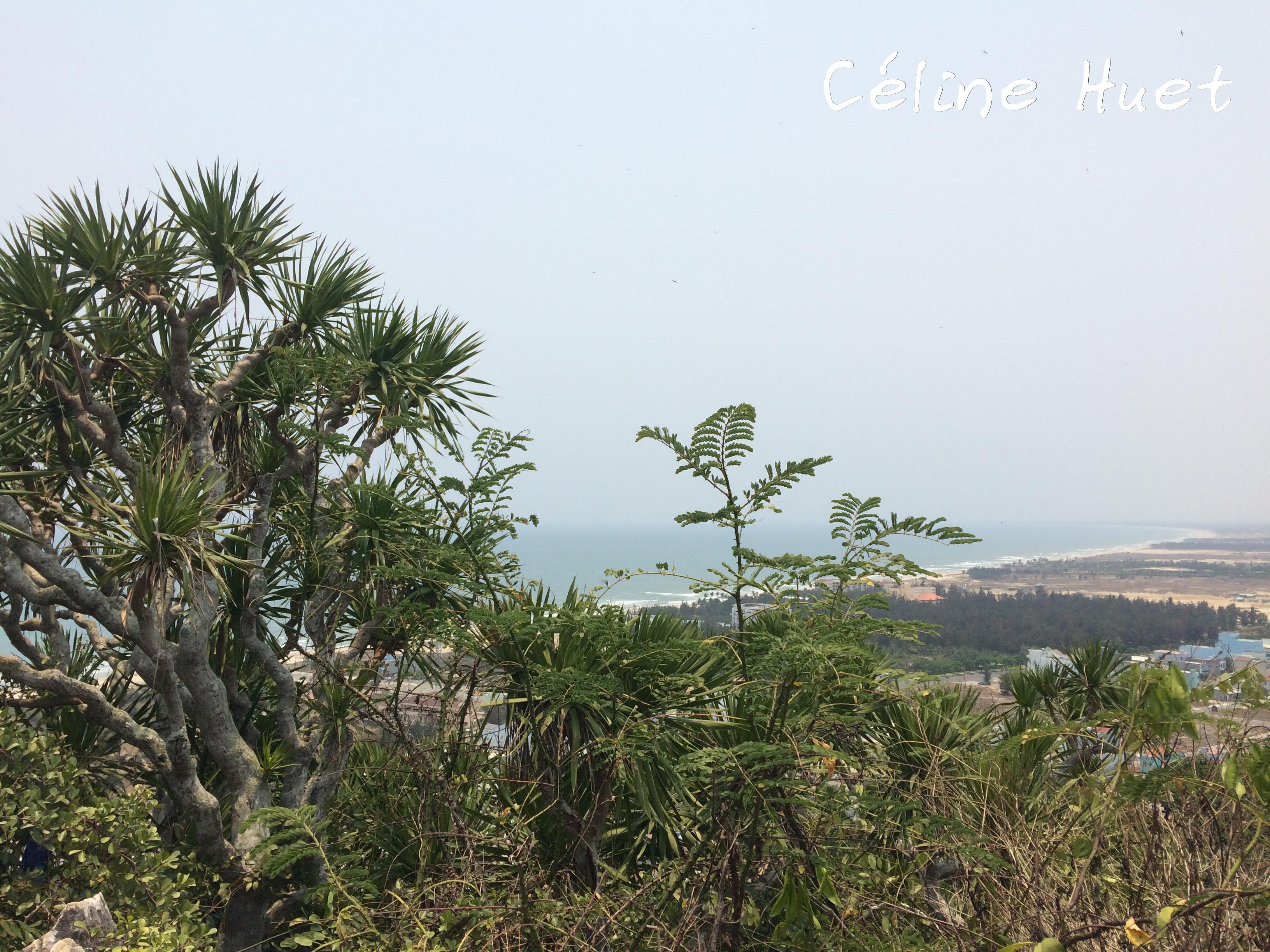 Mer de Chine Montagnes de marbre Da Nang Vietnam Asie
