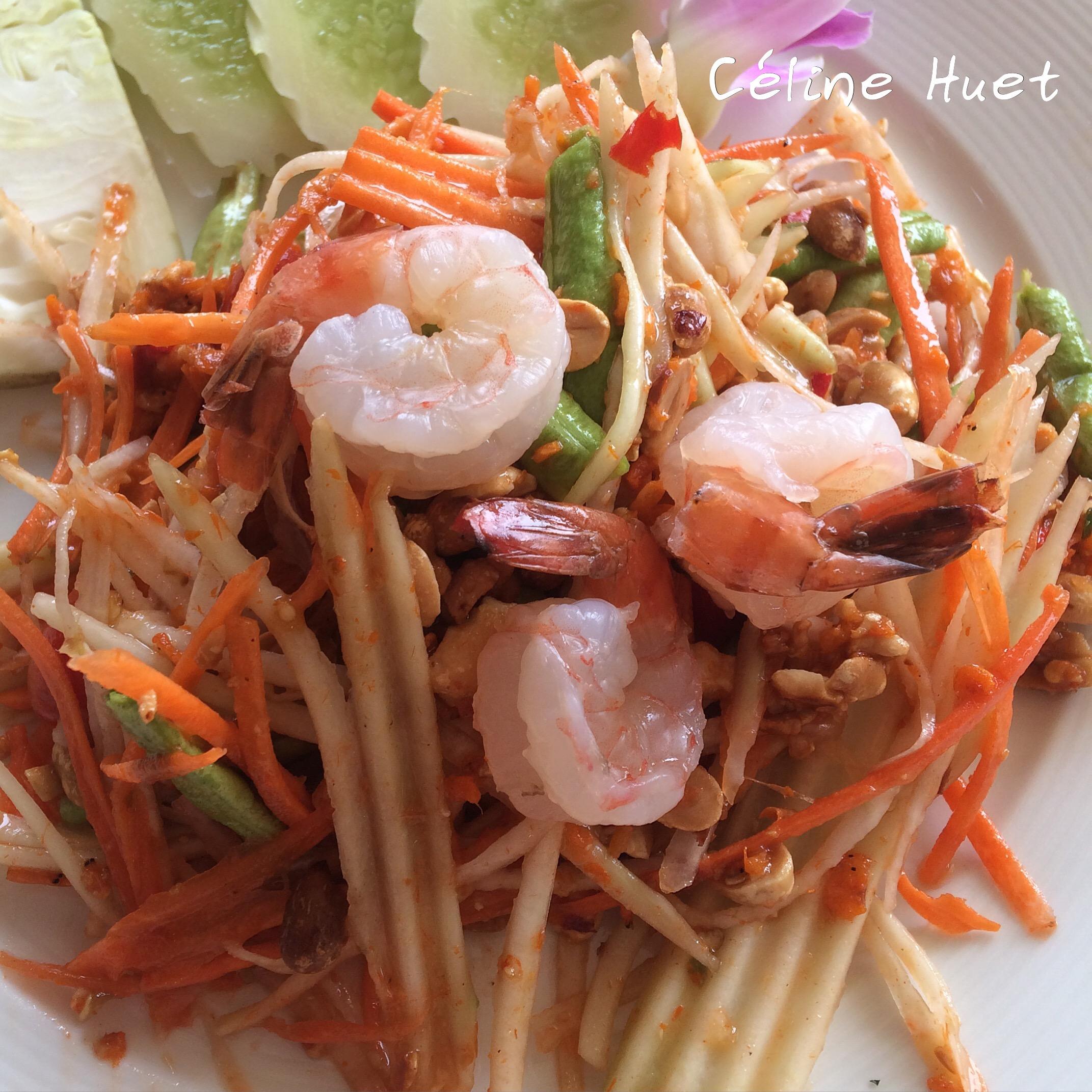 Salade de papaye Ayutthaya Heritage Ayutthaya Thaïlande Asie