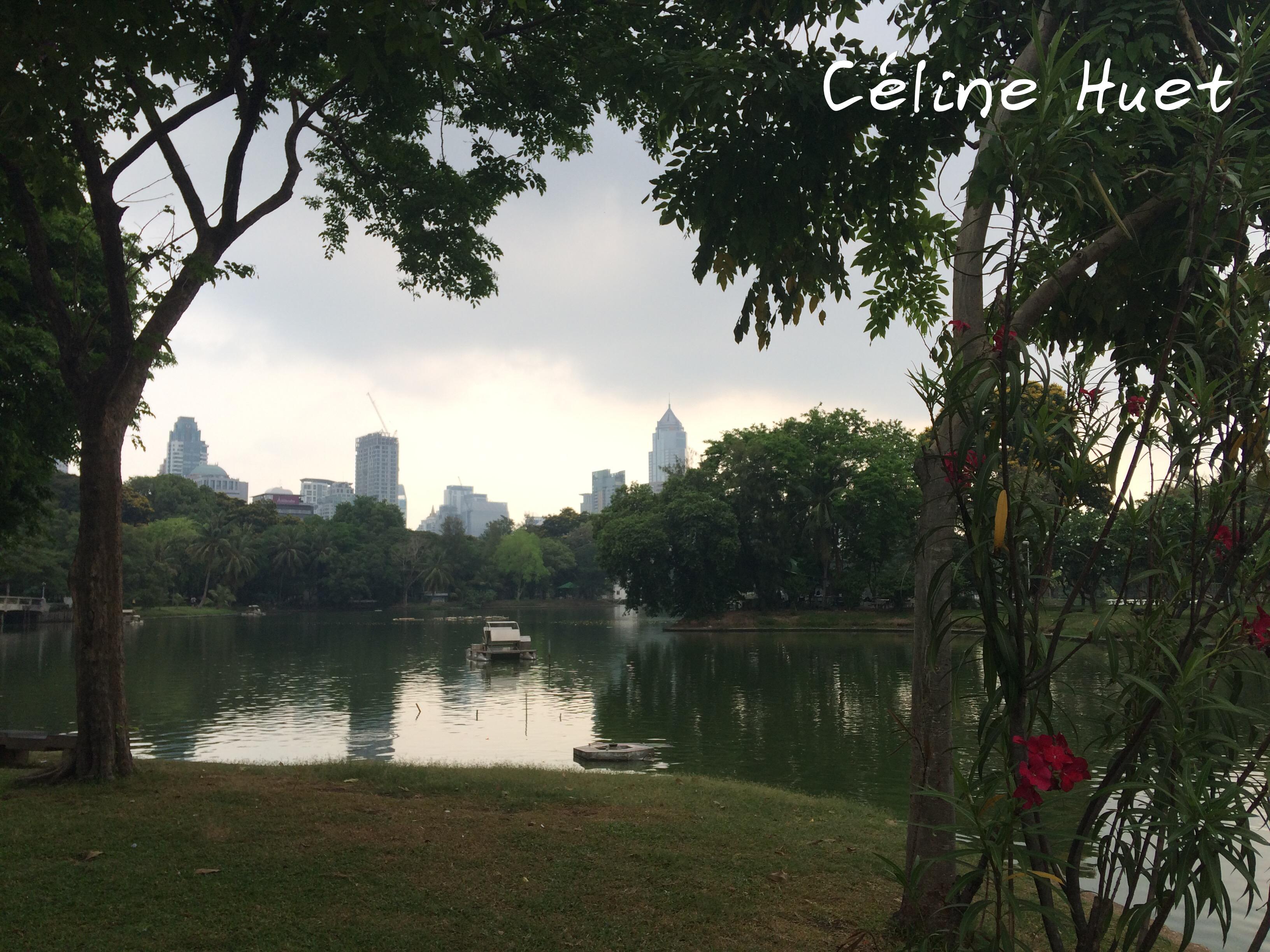 Lumpini Park Bangkok Thaïlande Asie