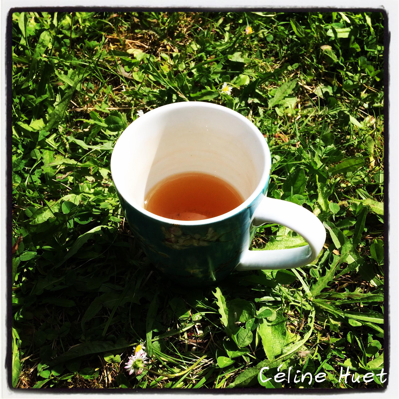 Thé dans l'herbe