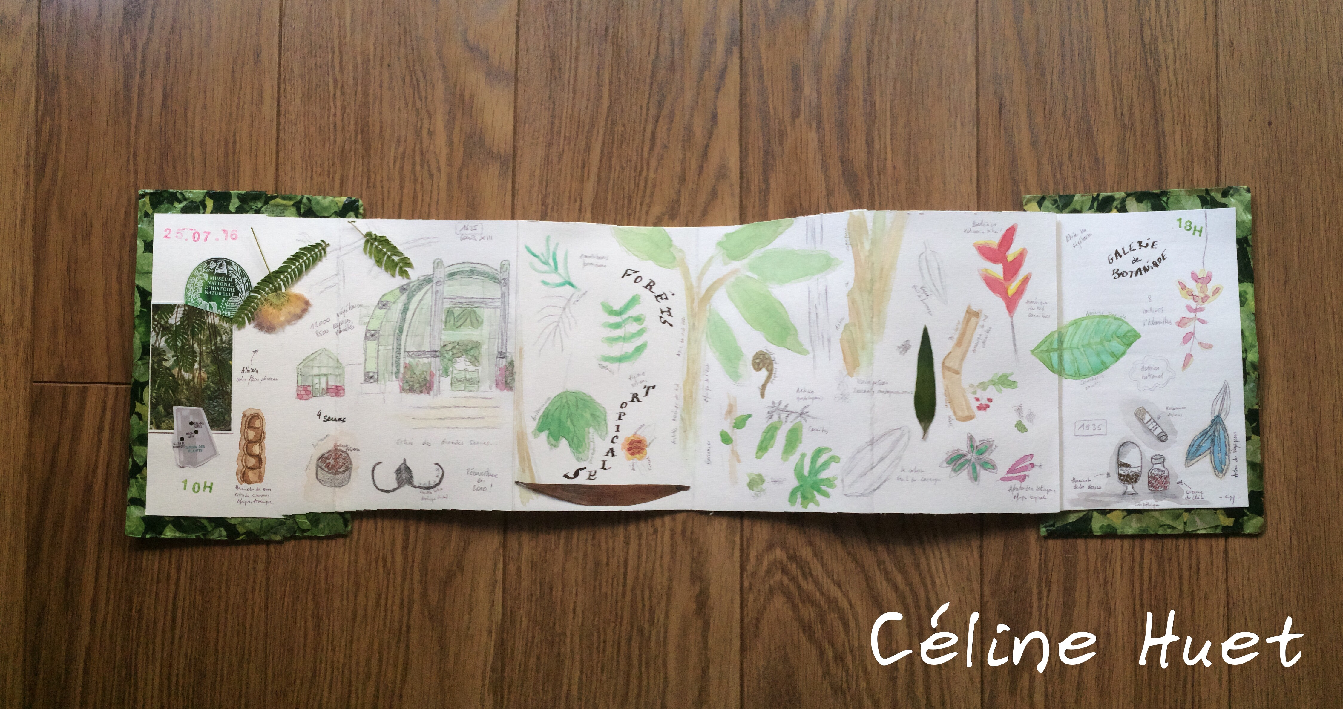 Carnet de voyage botanique et tropical à Paris Céline Huet