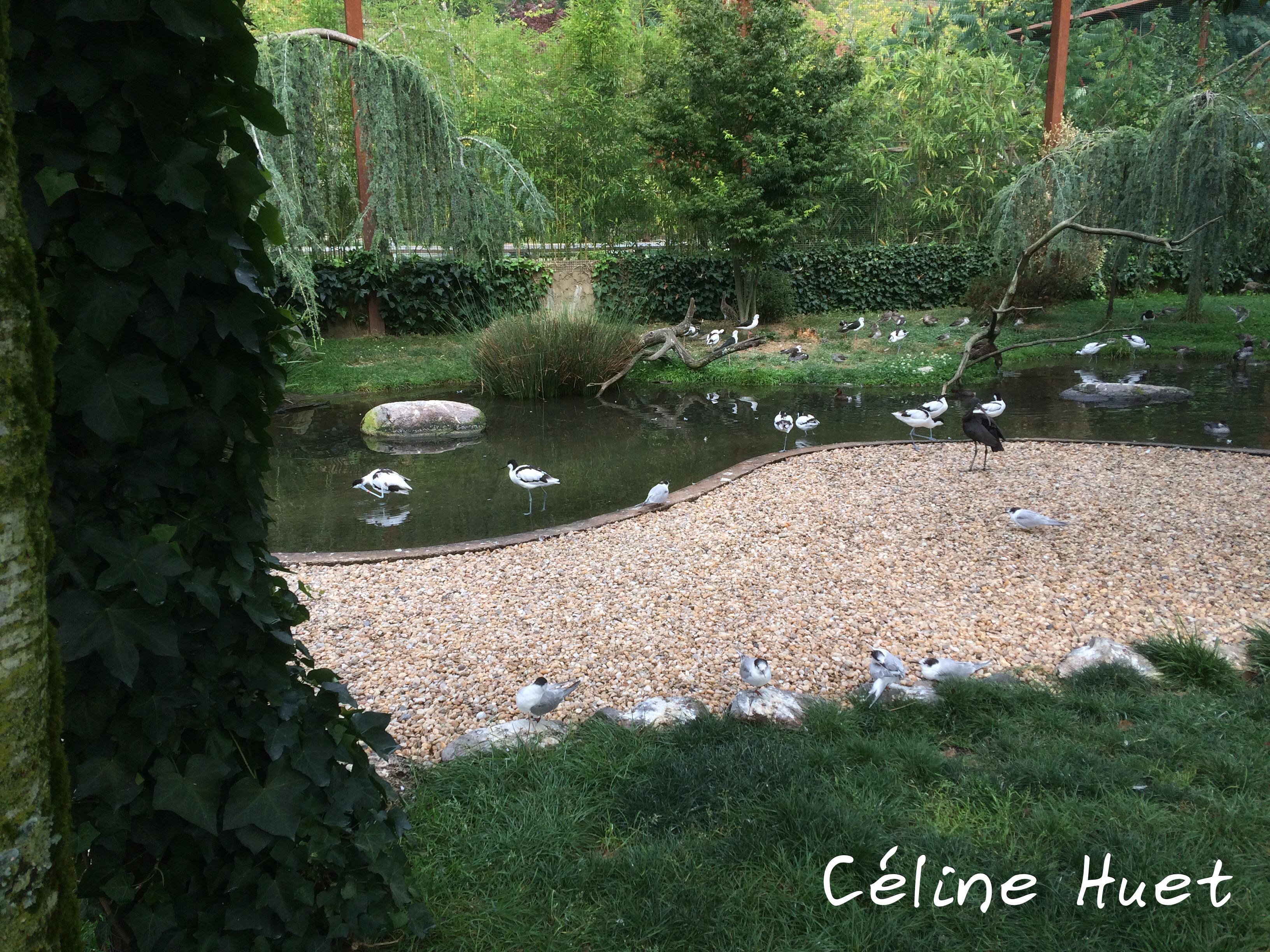 Parc animalier Argelès-Gazost Pyrénées France