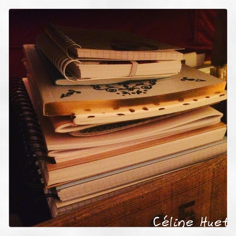 #flow2ans Ode aux petits carnets