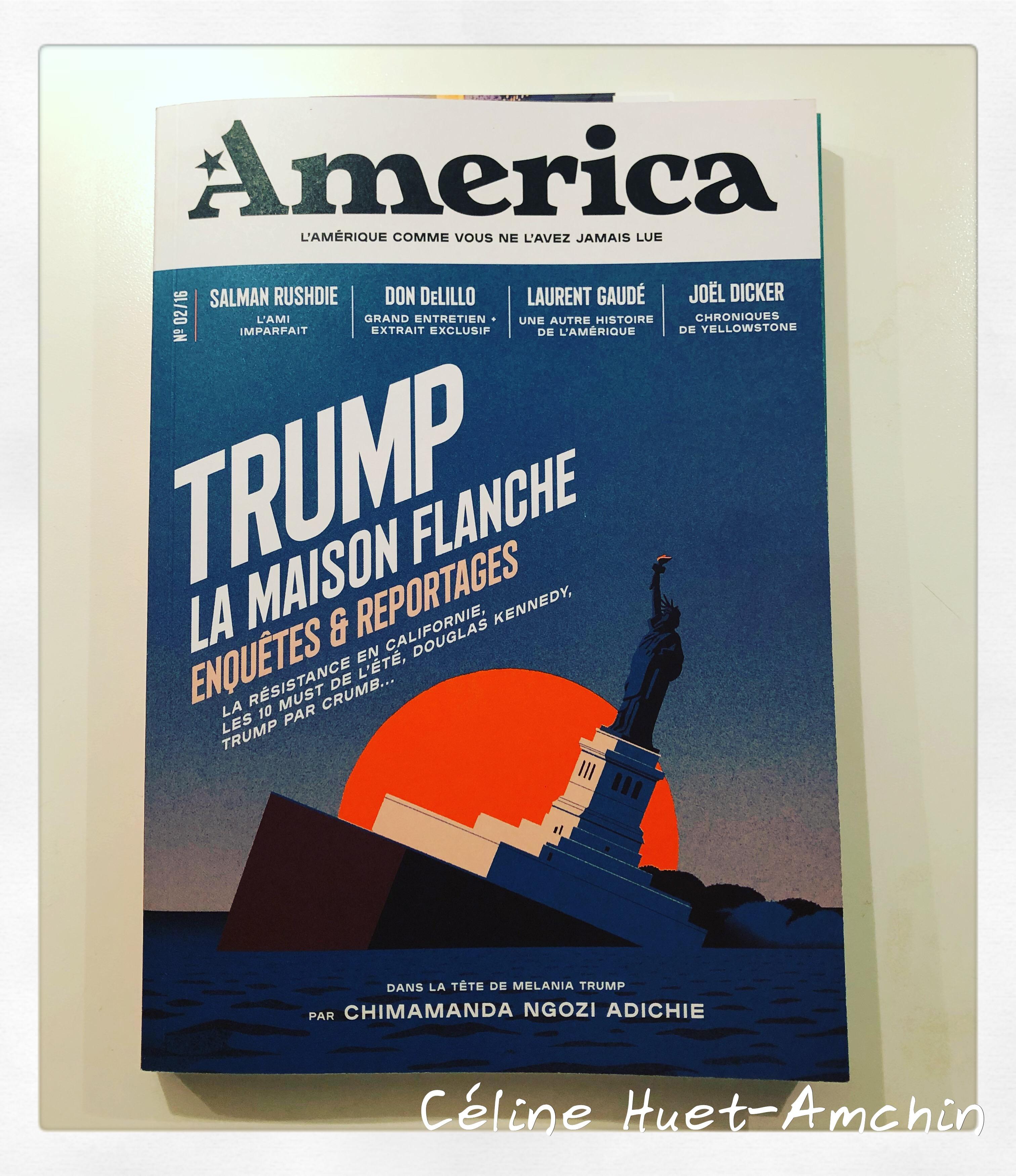 America Busnel Fottorino n° 2