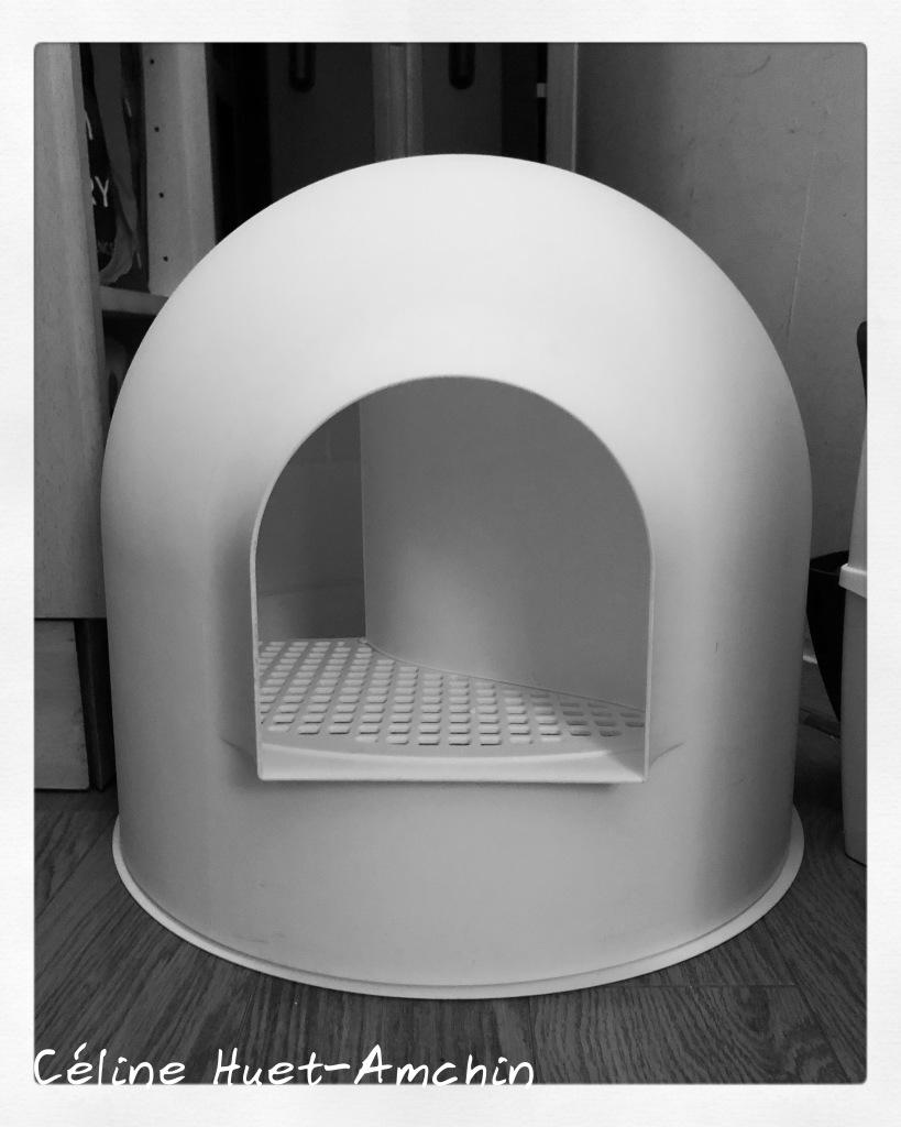 La litière igloo (Pidan Studio)