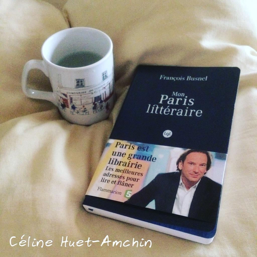 """""""Mon Paris littéraire"""" de François Busnel..."""