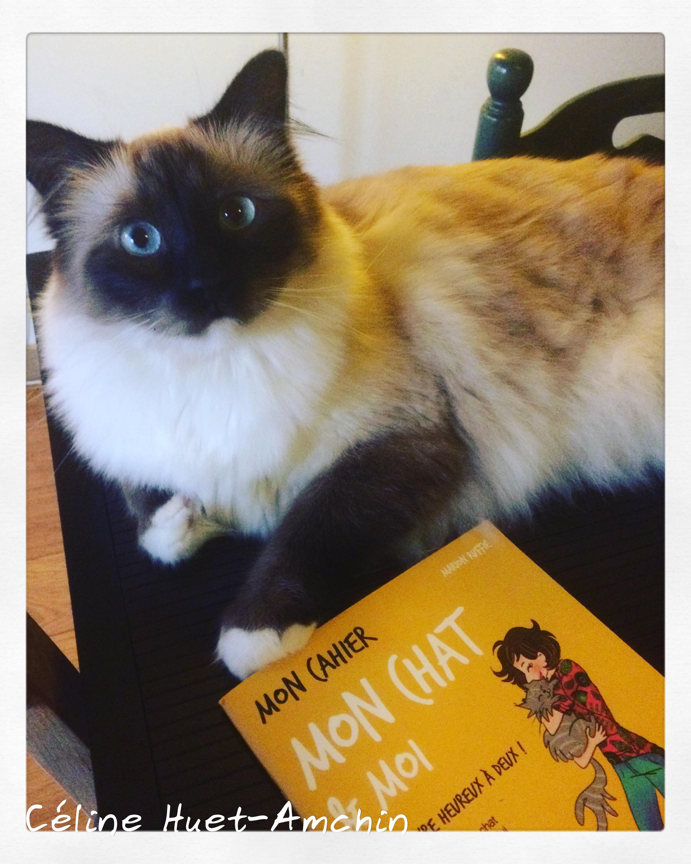 Mon chat & Moi Marion Ruffié Editions Solar