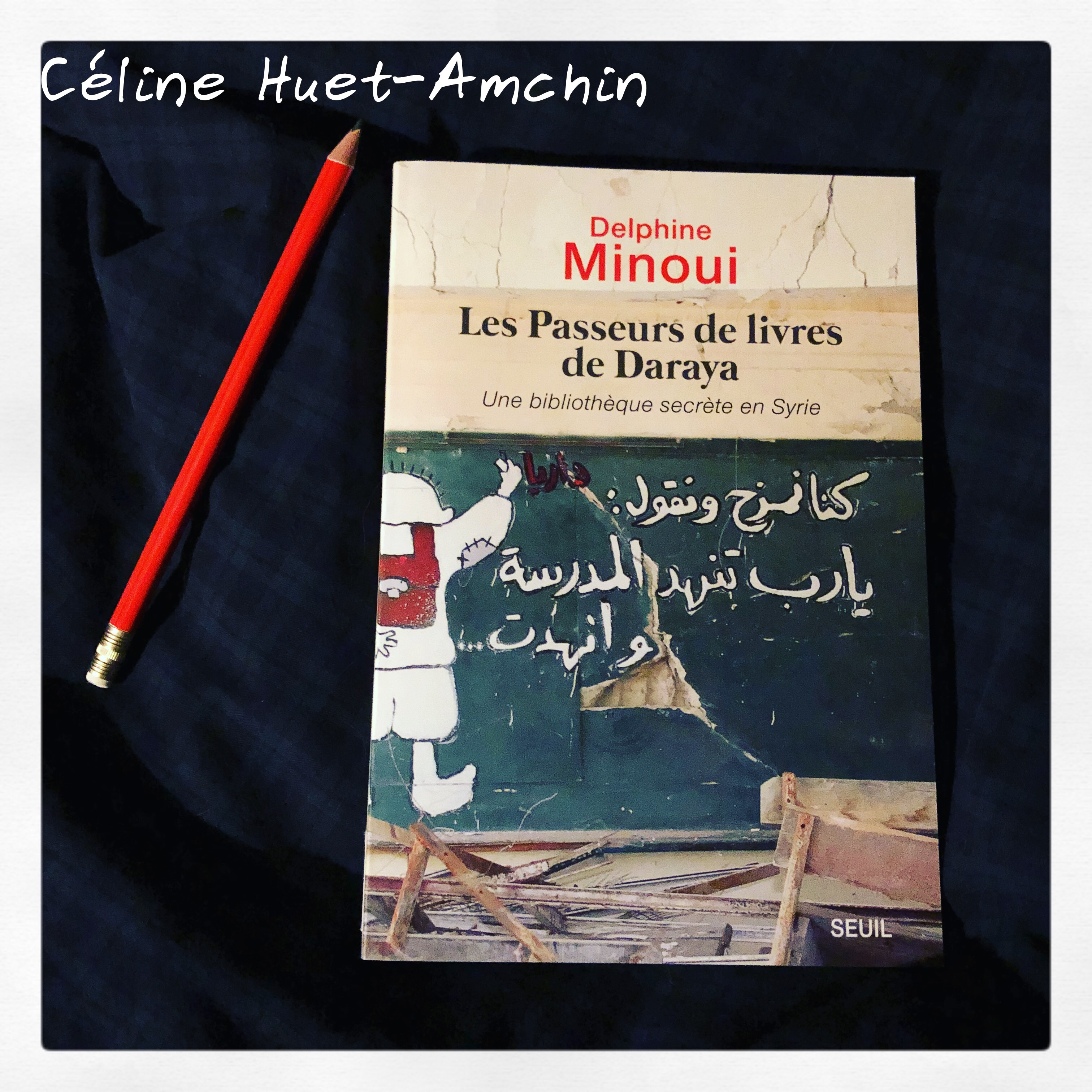 Les passeurs de livres de Daraya Delphine Minoui Editions Seuil