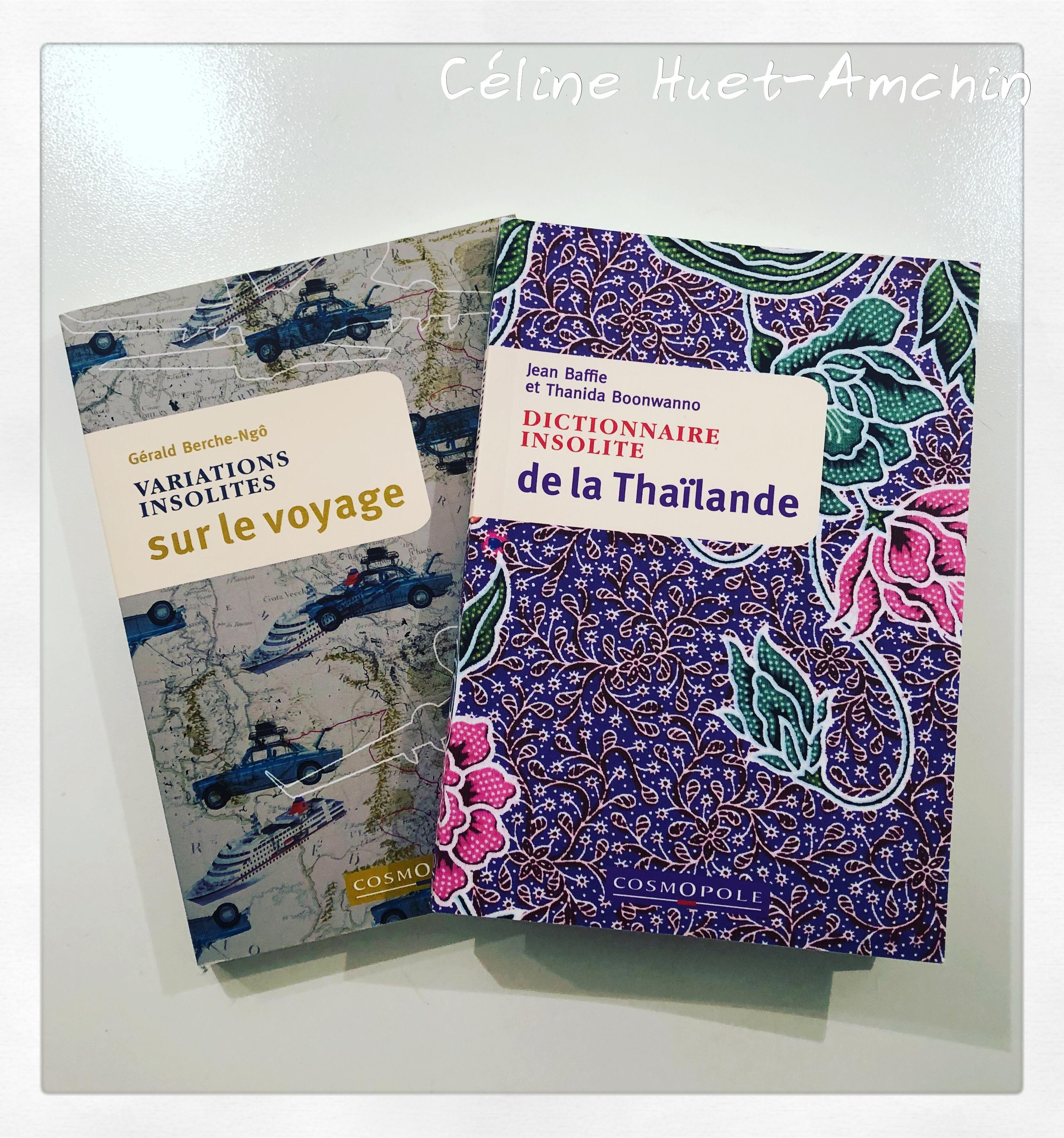 Variations insolites sur le voyage Gérald Berche-Ngo Dictionnnaire insolite de la Thaïlande Editions Cosmopole