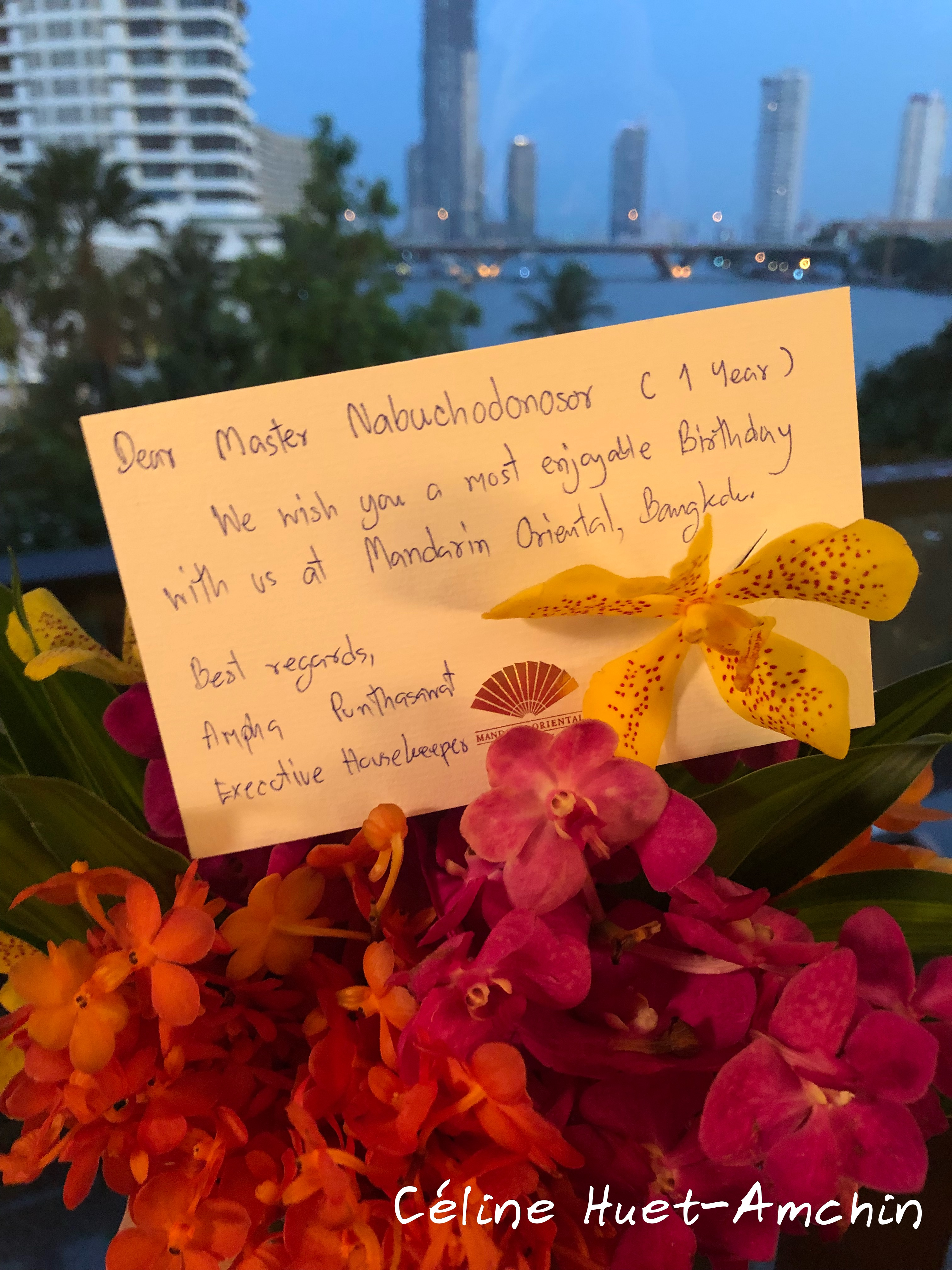 Anniversaire Nabuchodonosor Mandarin Oriental Bangkok Thaïlande Asie