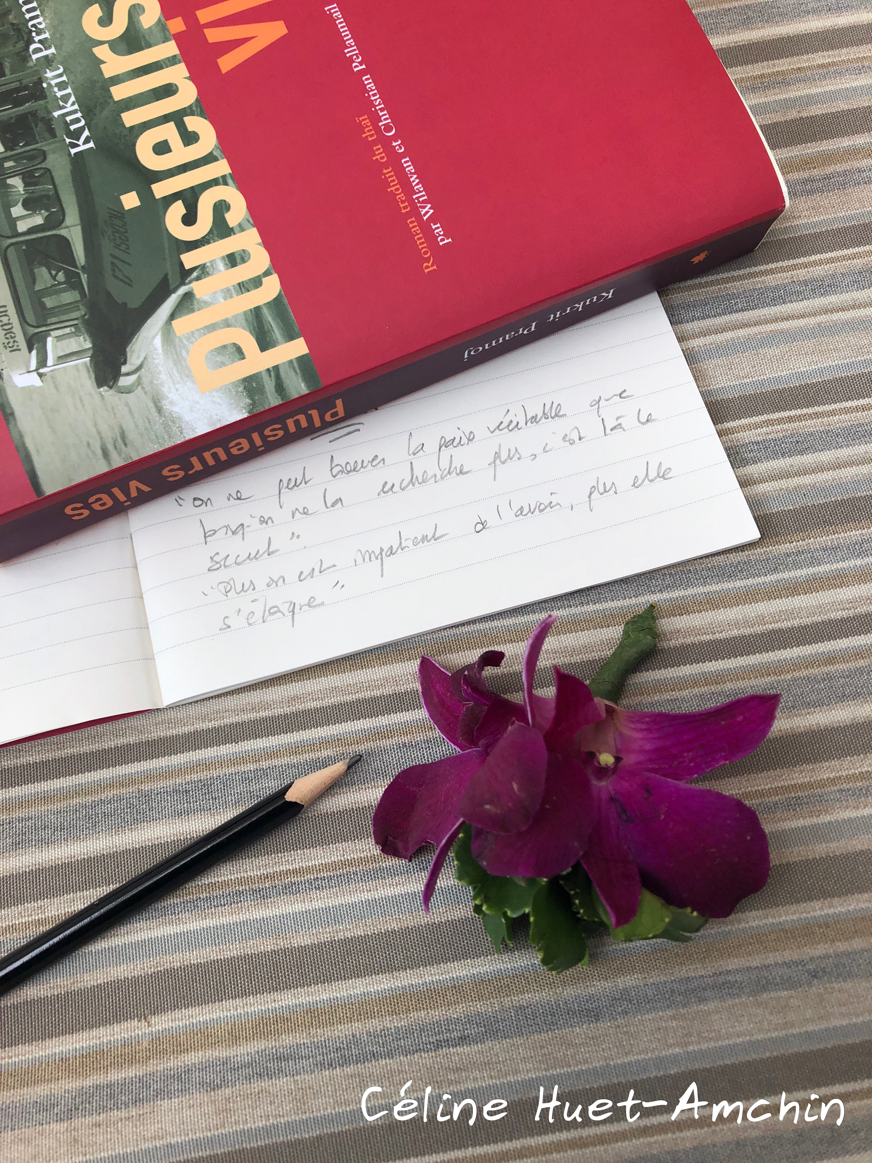 Plusieurs vies Kukrit Pramoj Editions Langues & Mondes L'Asiathèque Bangkok Thaïlande Asie