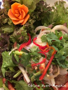 Salade de boeuf thaï Bangkok Thaïlande Asie