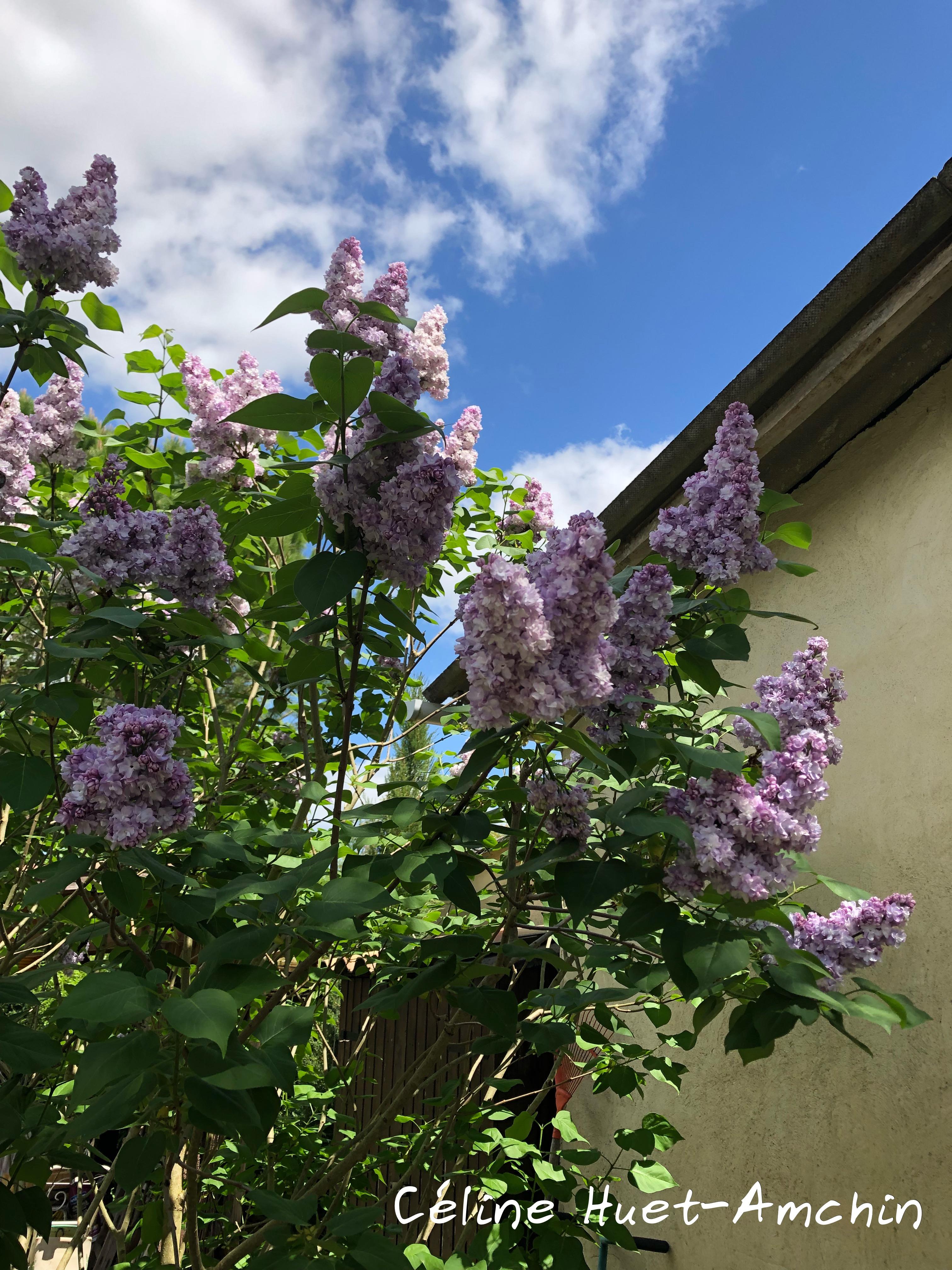 Huet's garden Gers Gascogne Occitanie