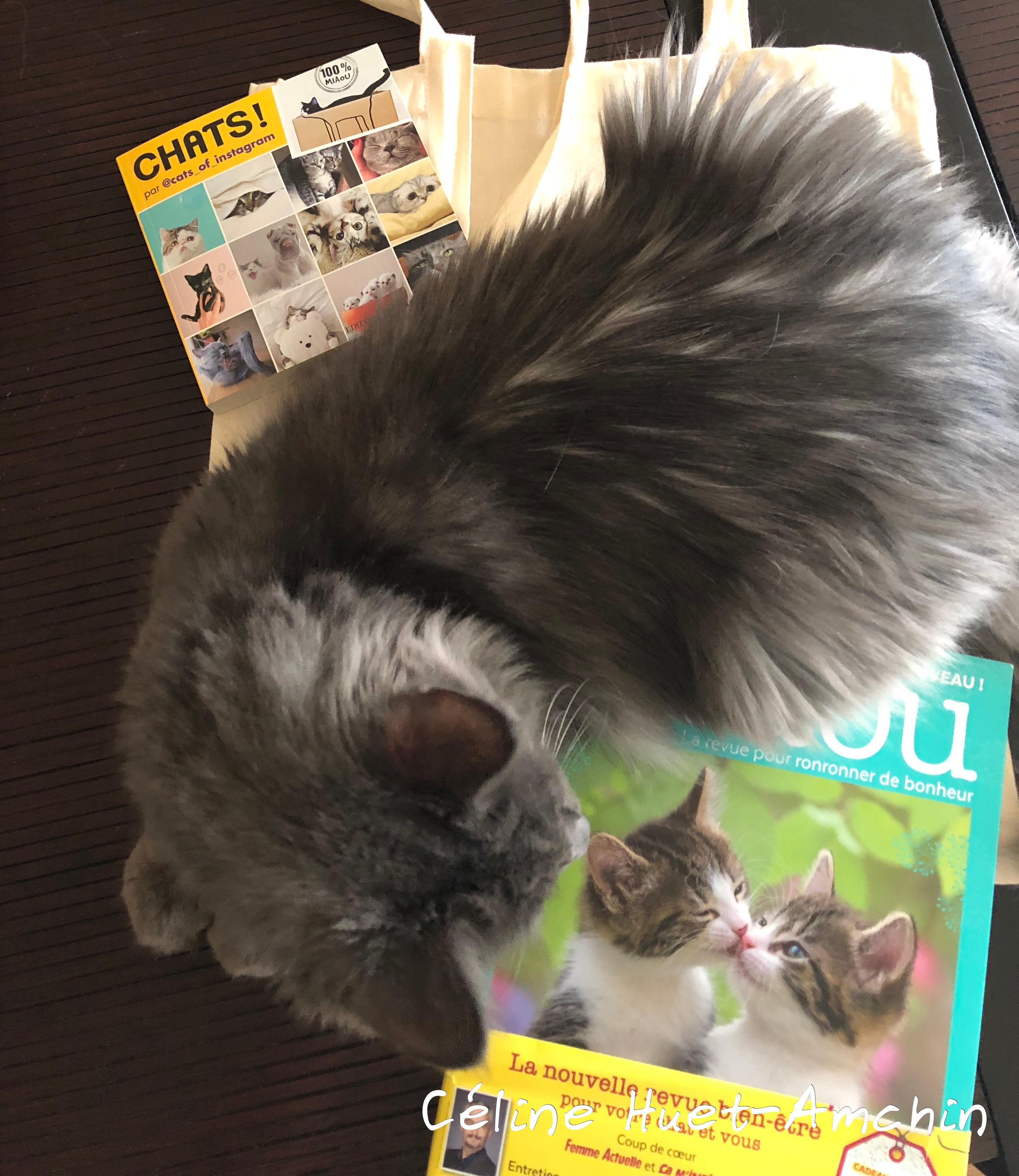 Miaou la revue n° 2