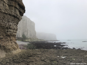La Valleuse de Valaine et la Pointe de la Courtine Etretat Normandie