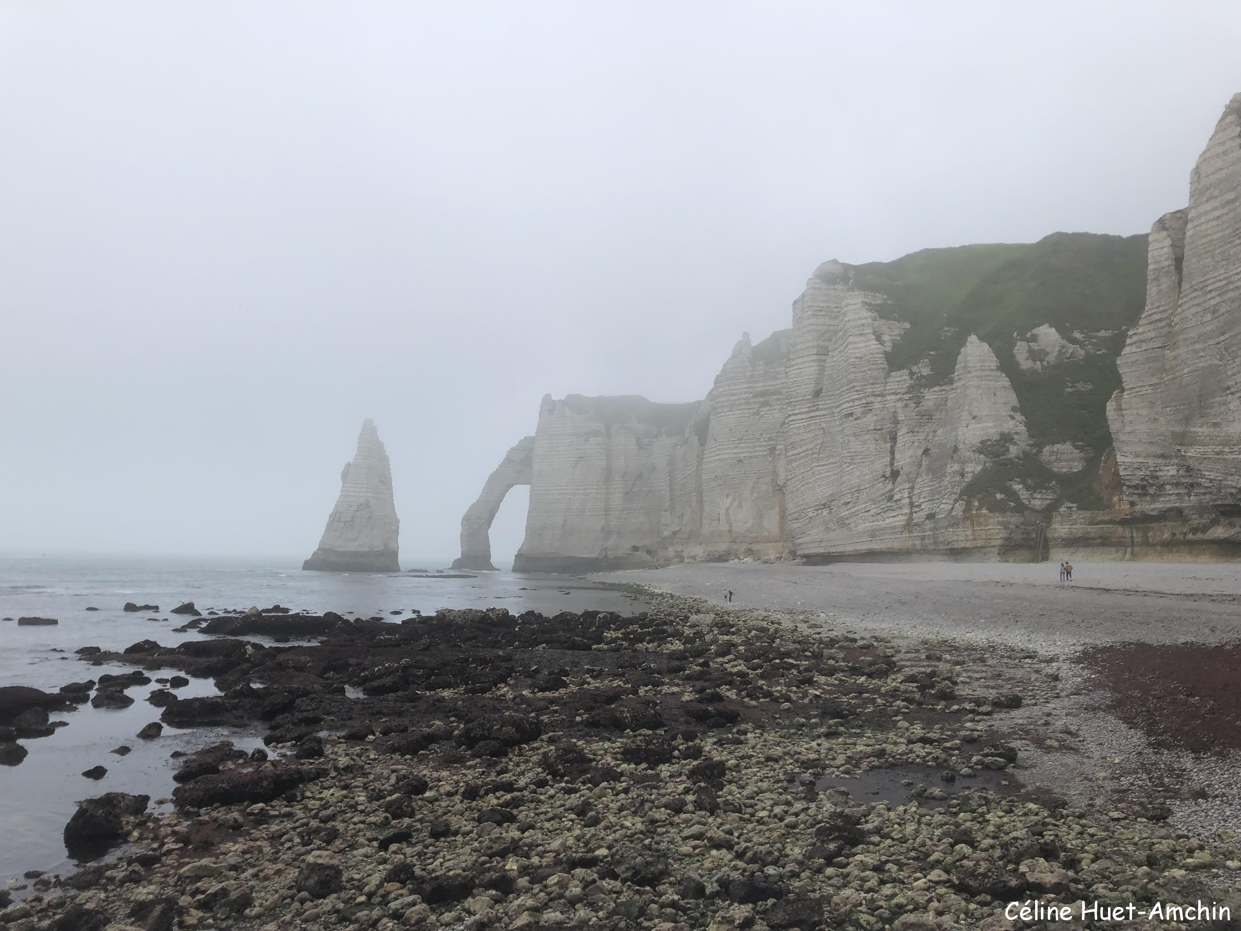 La Valleuse de Jambourg la Porte et l'Aiguille d'Aval Etretat Normandie