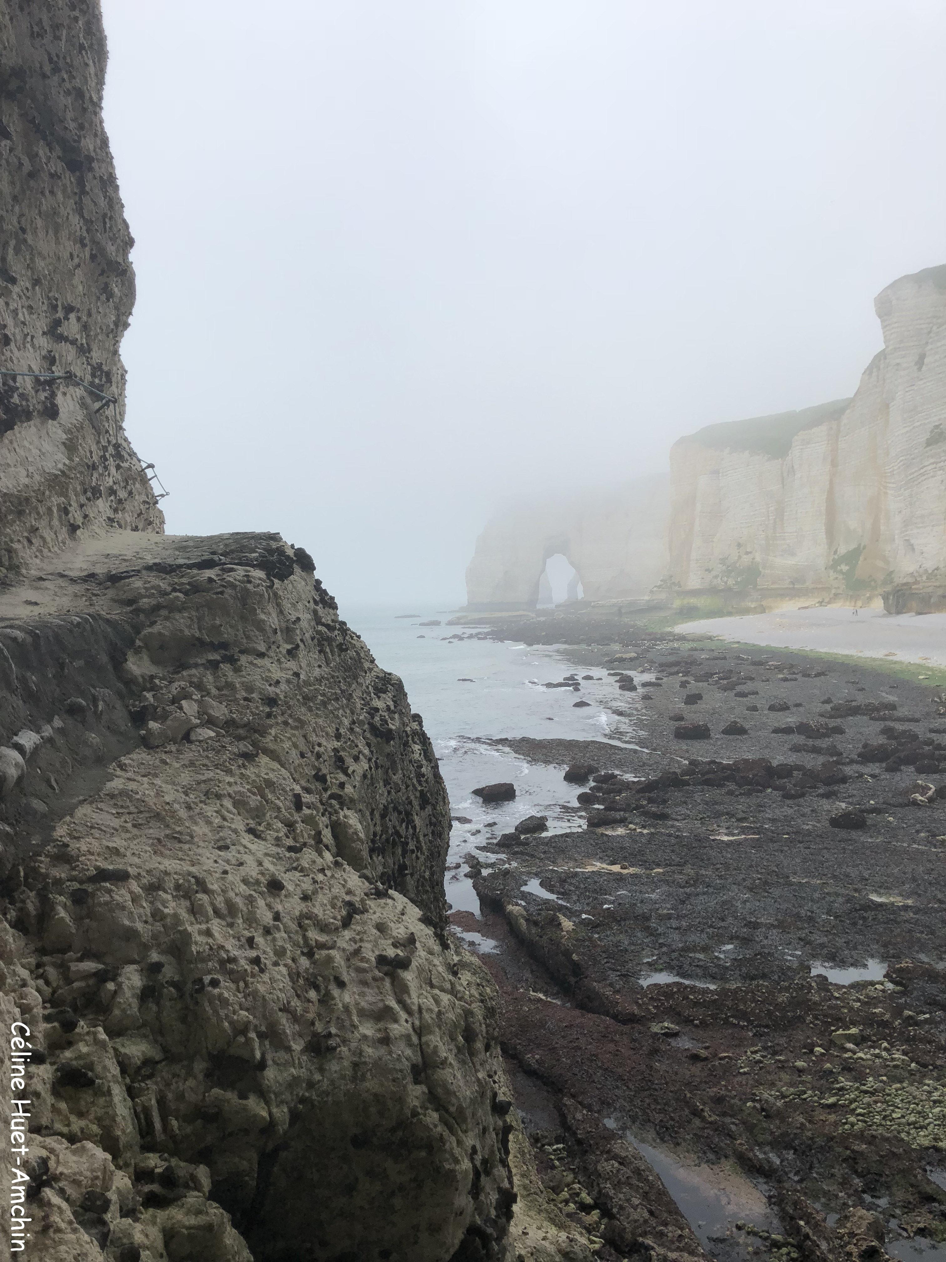 La Valleuse de Valaine la Manneporte et la Porte d'Aval au loin Etretat Normandie