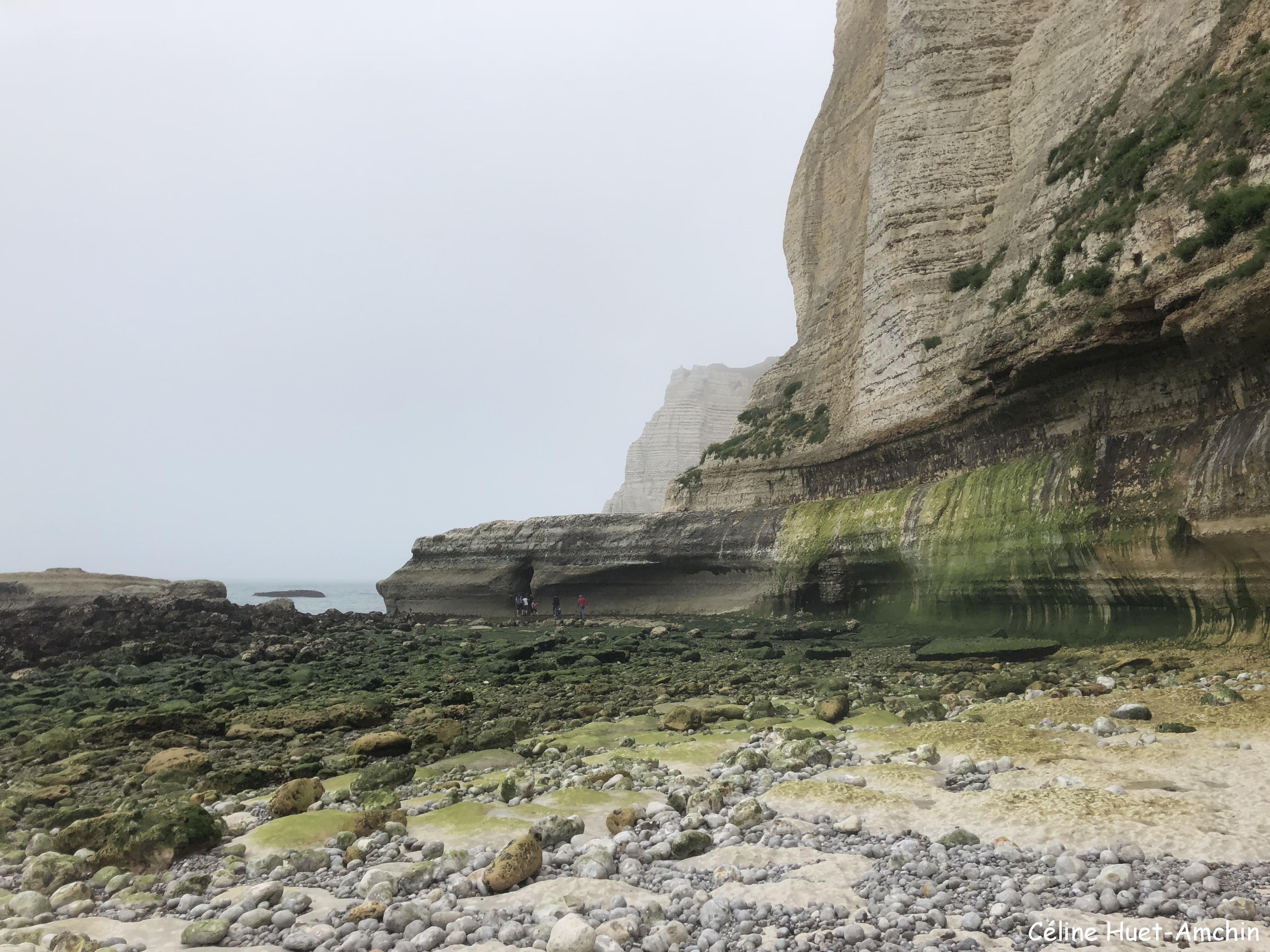 La Valleuse de Valaine Etretat Normandie