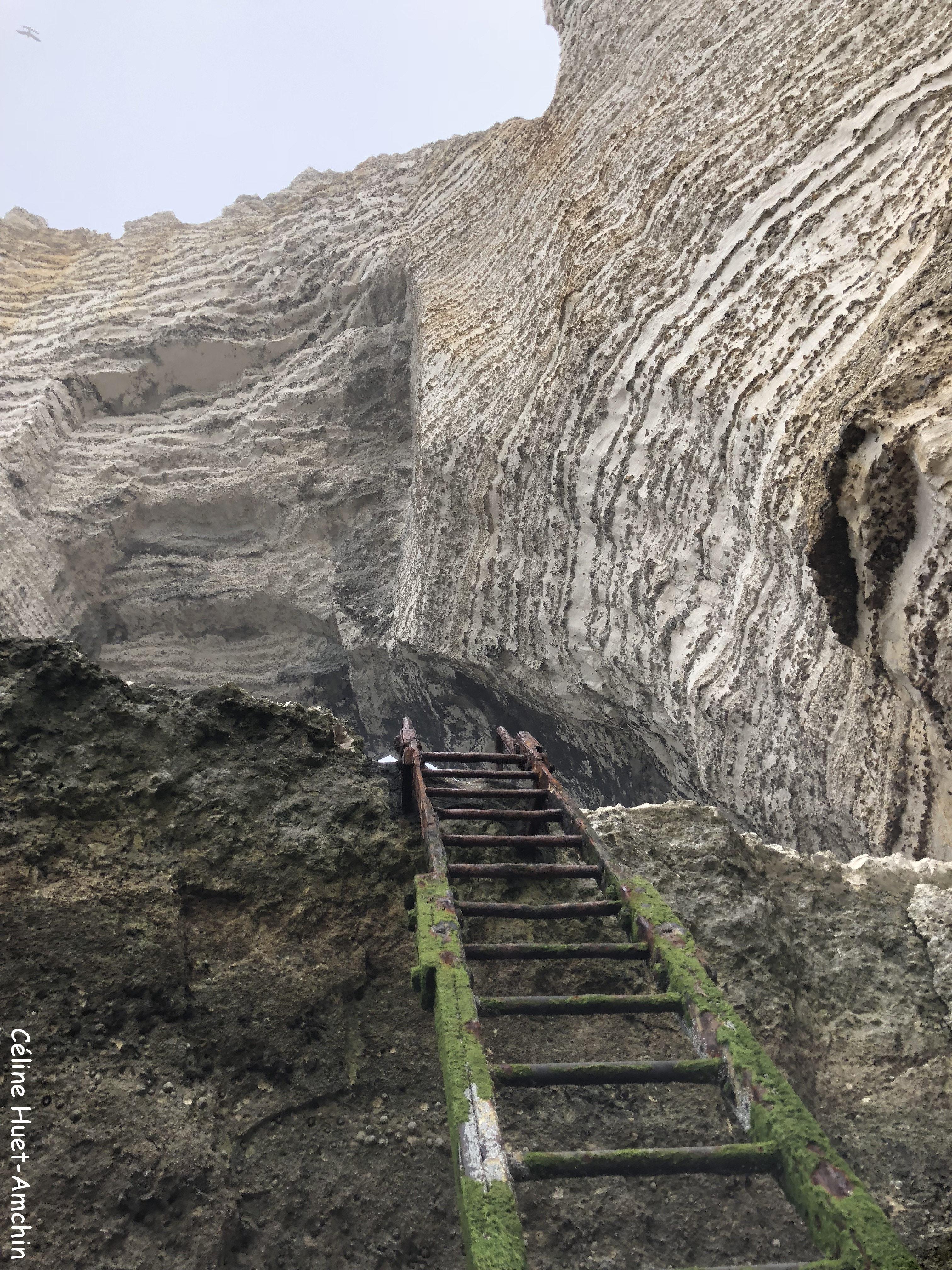 La Falaise de Valaine Etretat Normandie