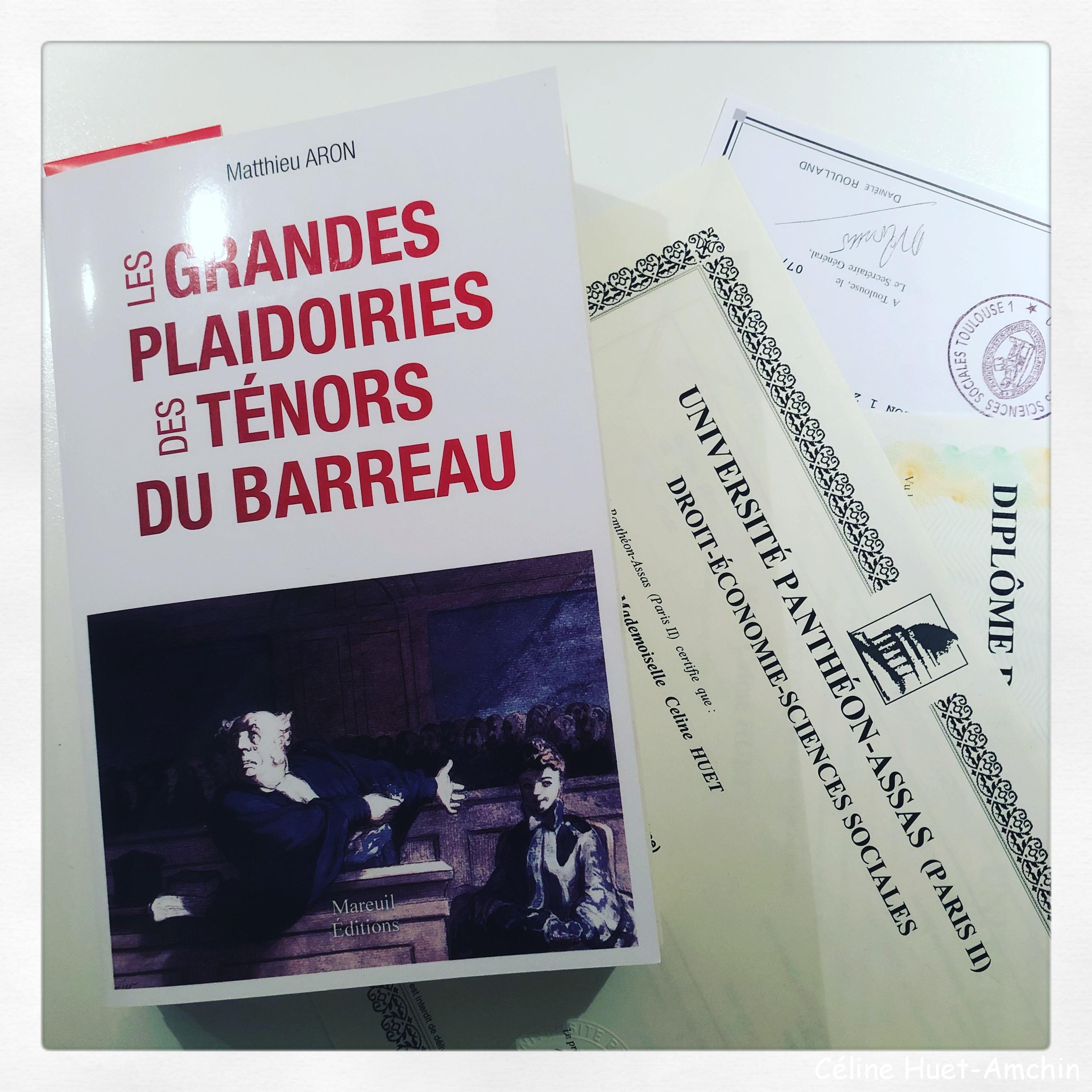 Les grandes plaidoiries des ténors du barreau Matthieu Aron Mareuil Editions