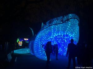 Espèces en voie d'illumination Jardin des Plantes Paris