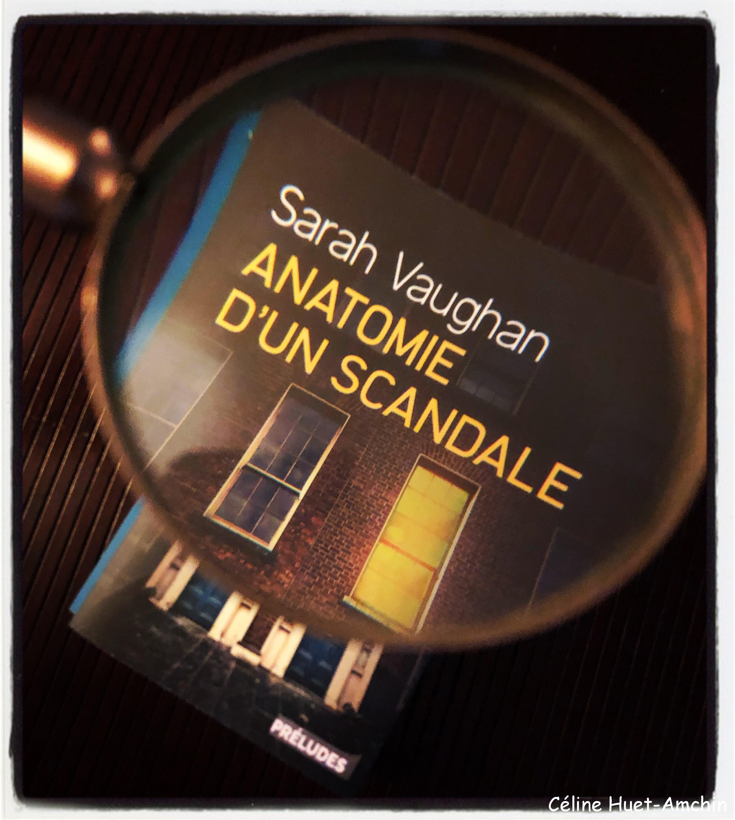 """""""Anatomie d'un scandale"""" de Sarah Vaughan..."""