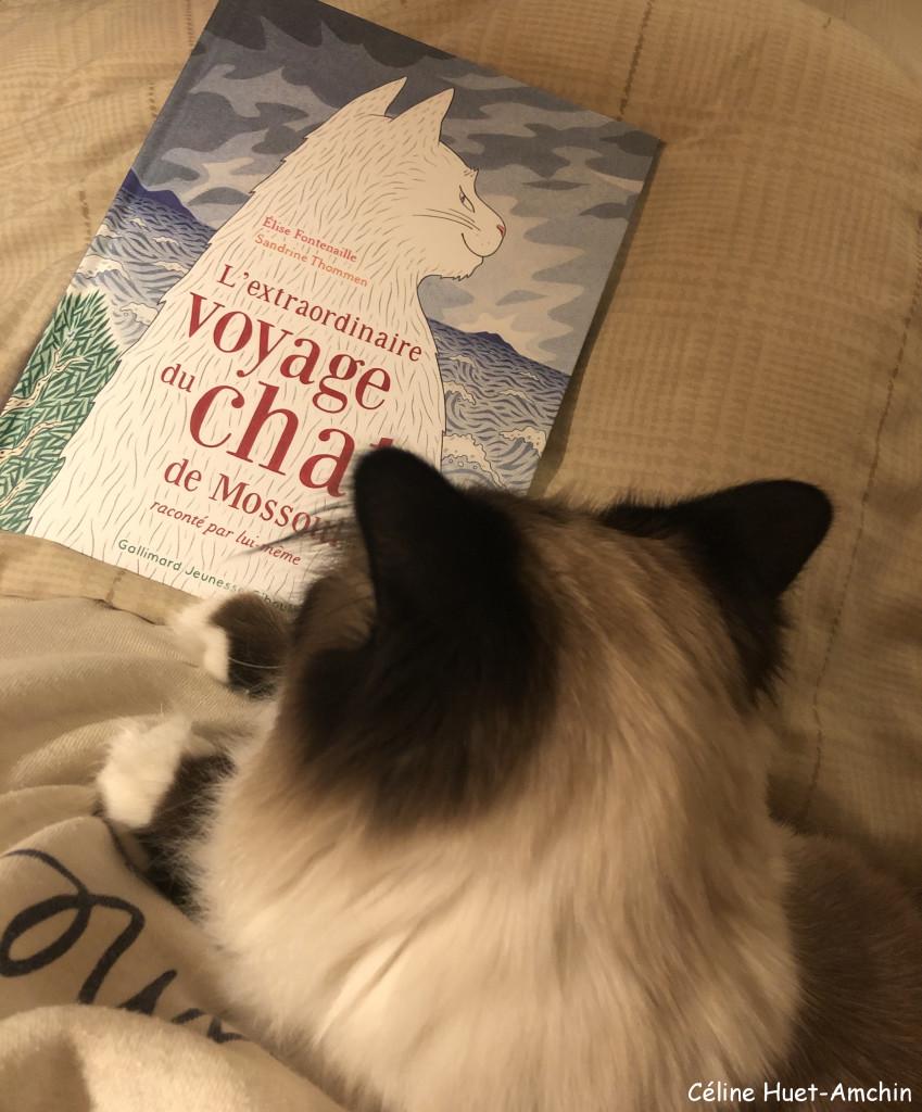 «L'extraordinaire voyage du chat de Mossoulraconté par lui-même» d'Elise Fontenaille & Sandrine Thommen...