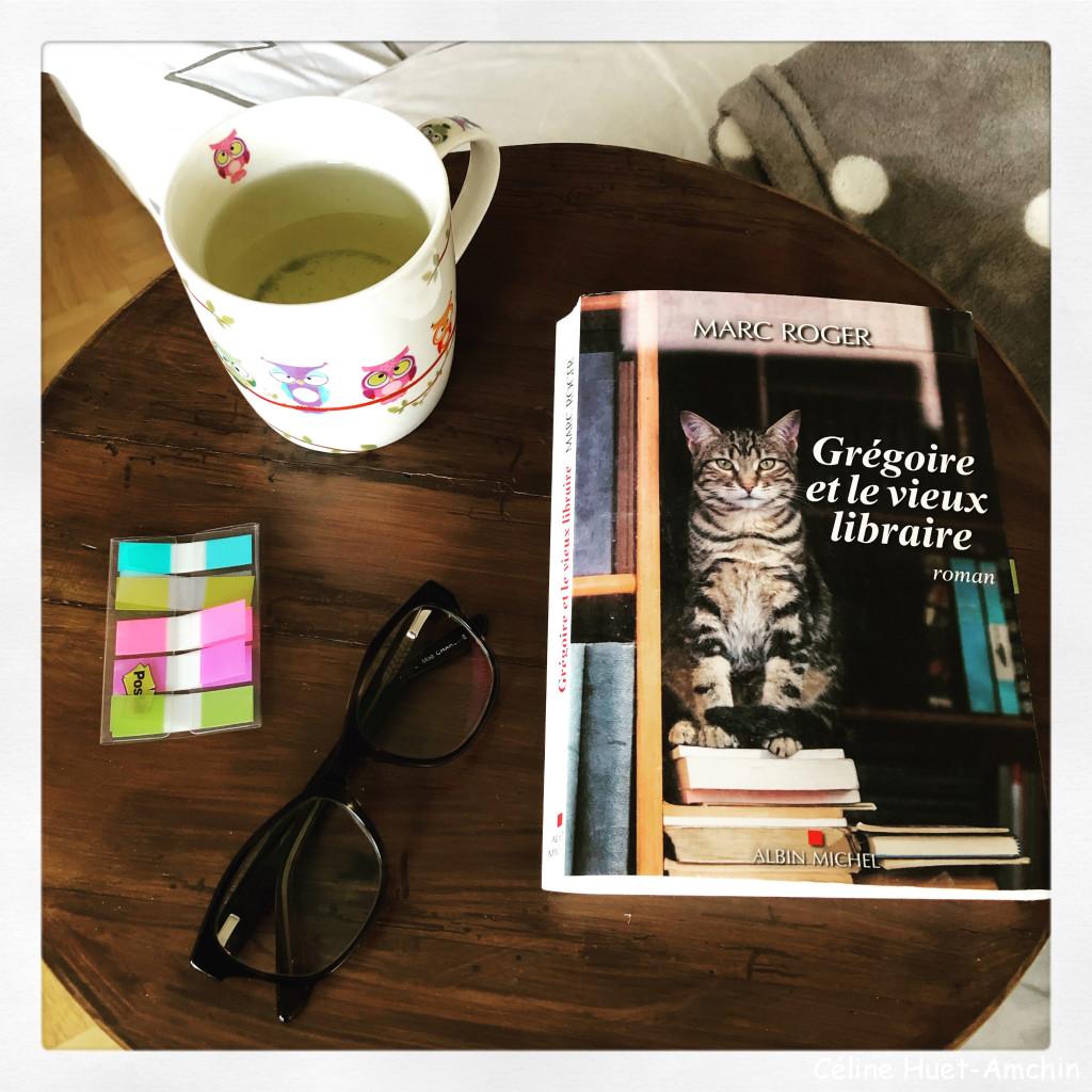 """""""Grégoire et le vieux libraire"""" de Marc Roger..."""