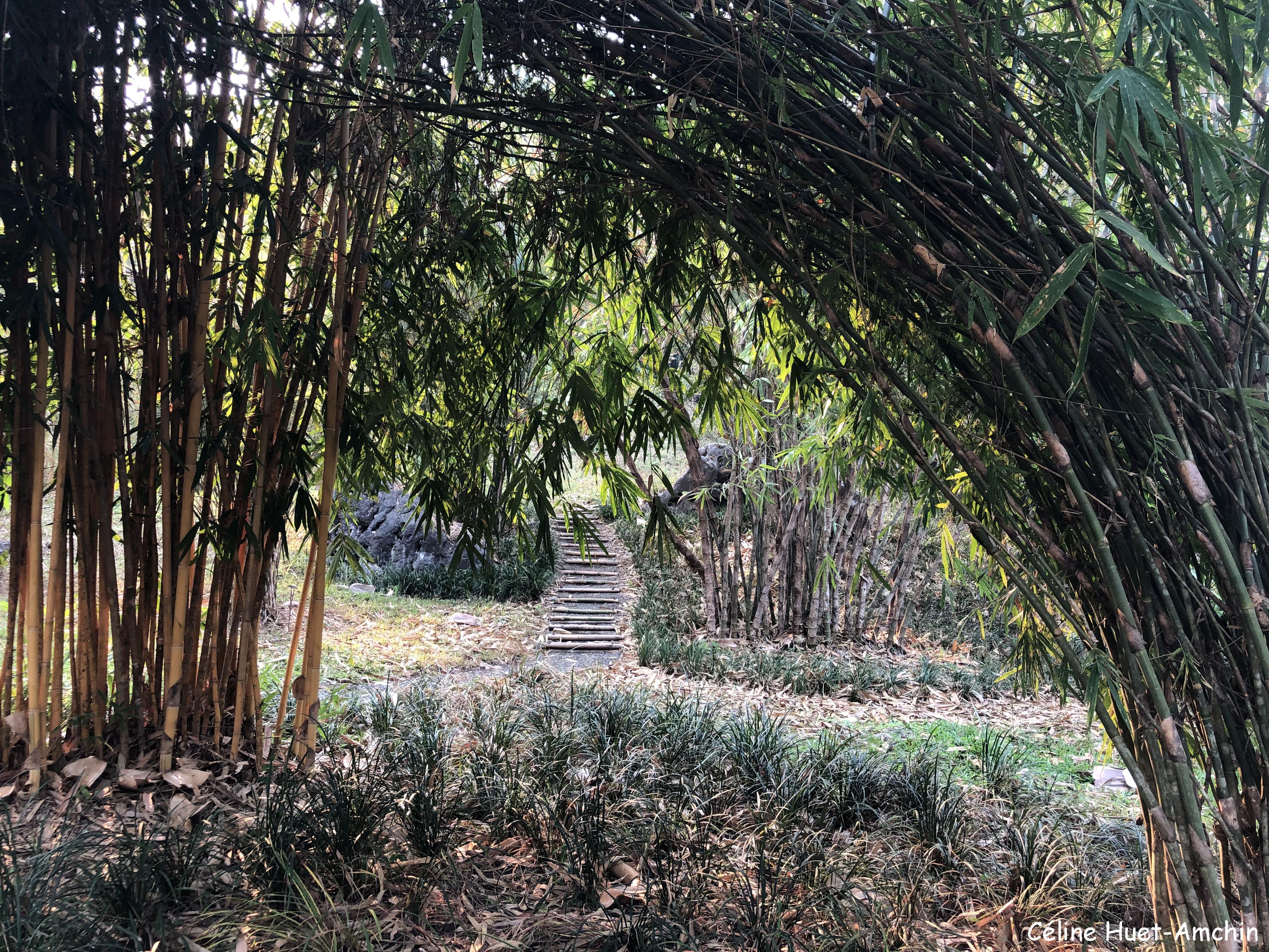 Pha Tad Ke Botanical Garden Laos Asie