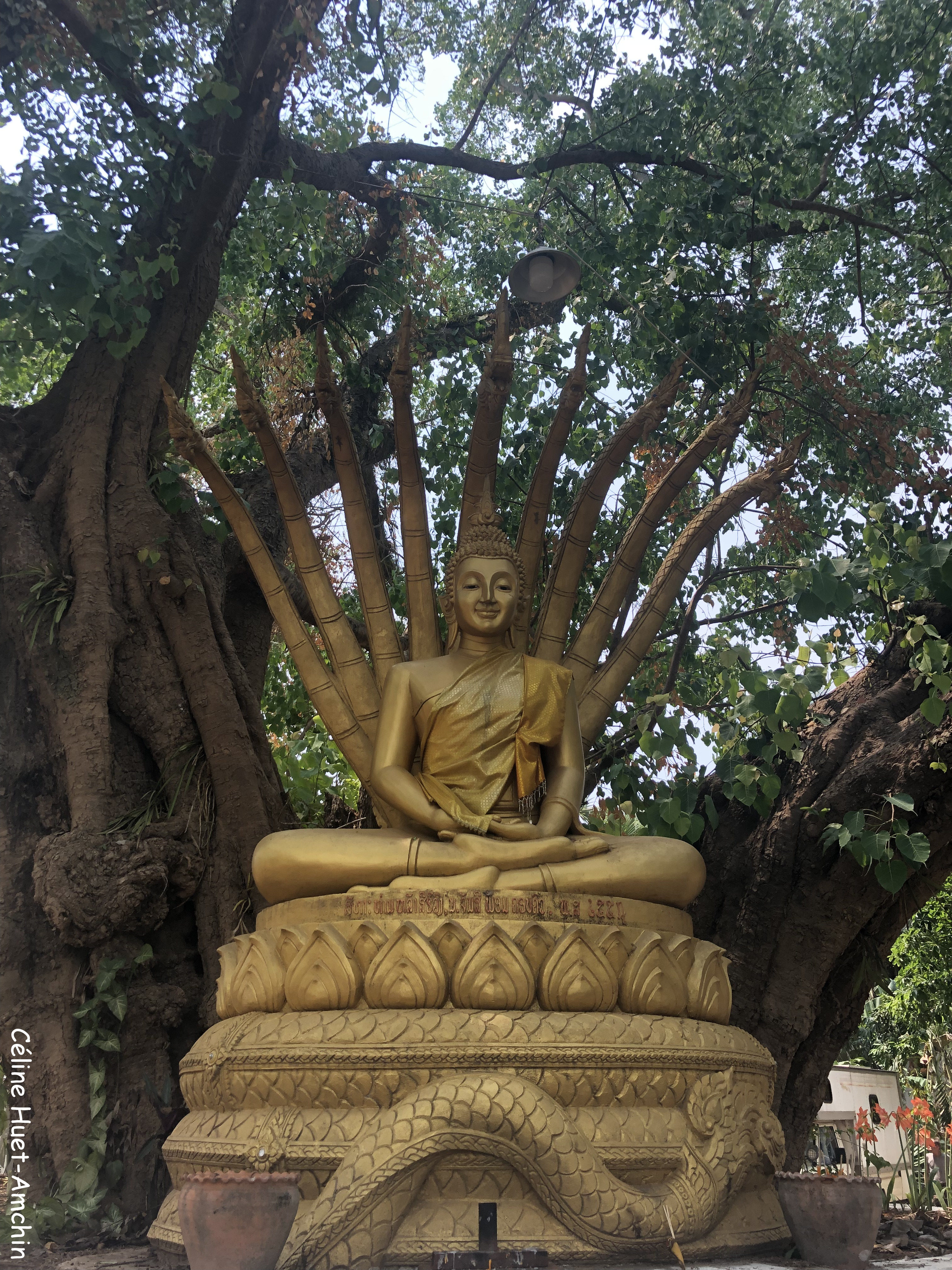 Vat Aham Luang Prabang Laos Asie