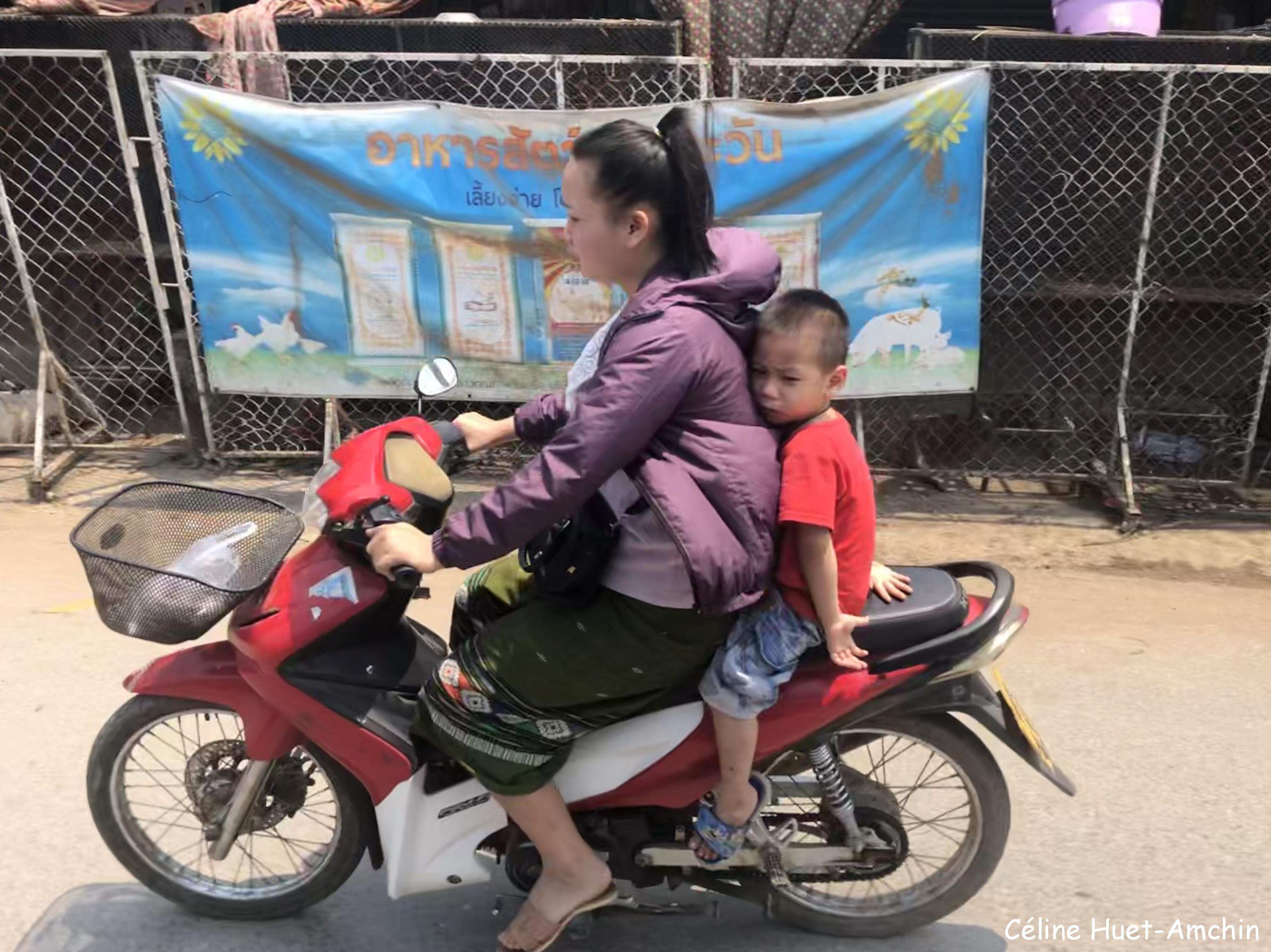 Sur la route entre Kuang Si et Luang Prabang Laos Asie