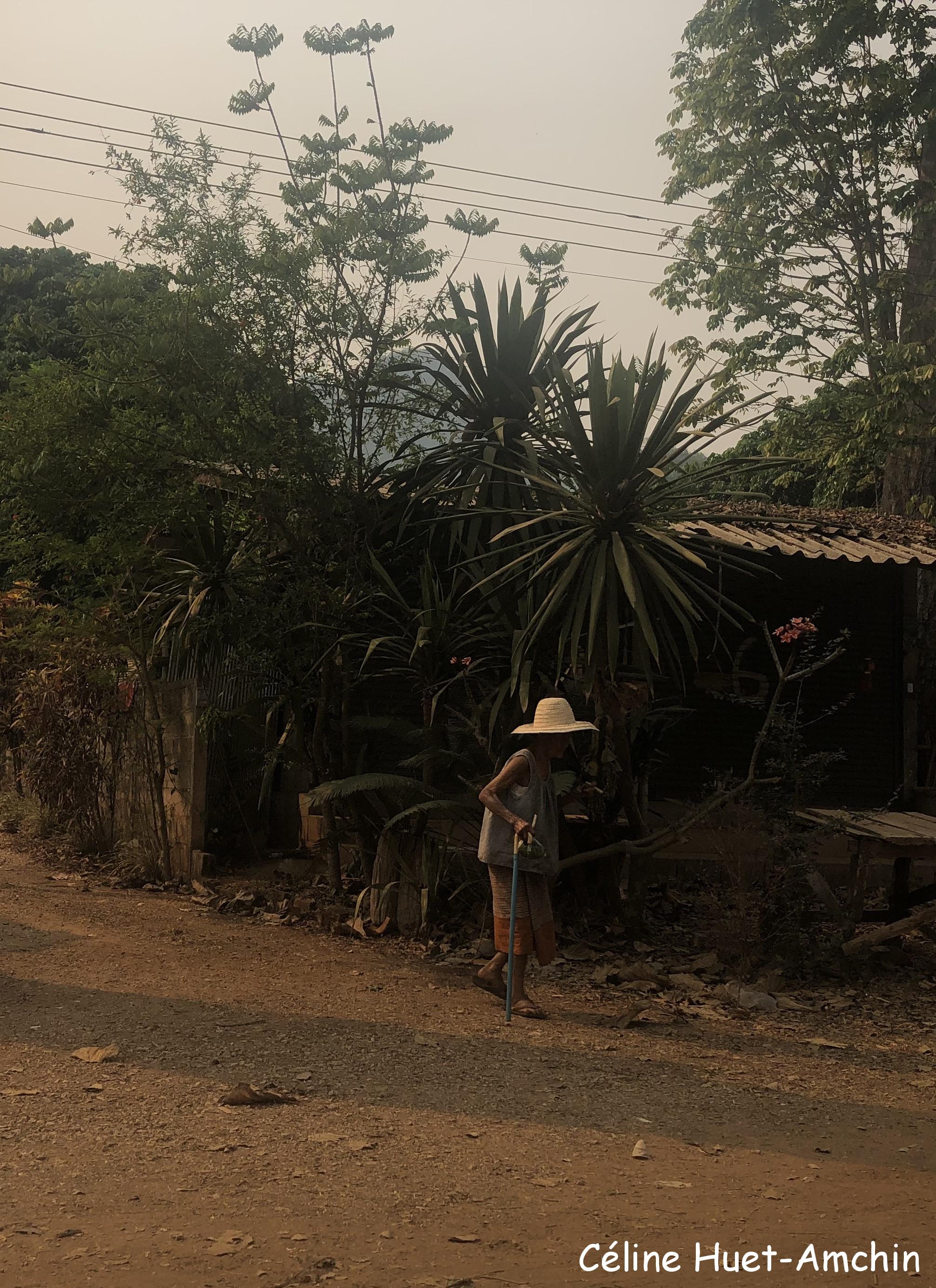 Sur la route Chiang Rai - Chiang Mai Thaïlande Asie