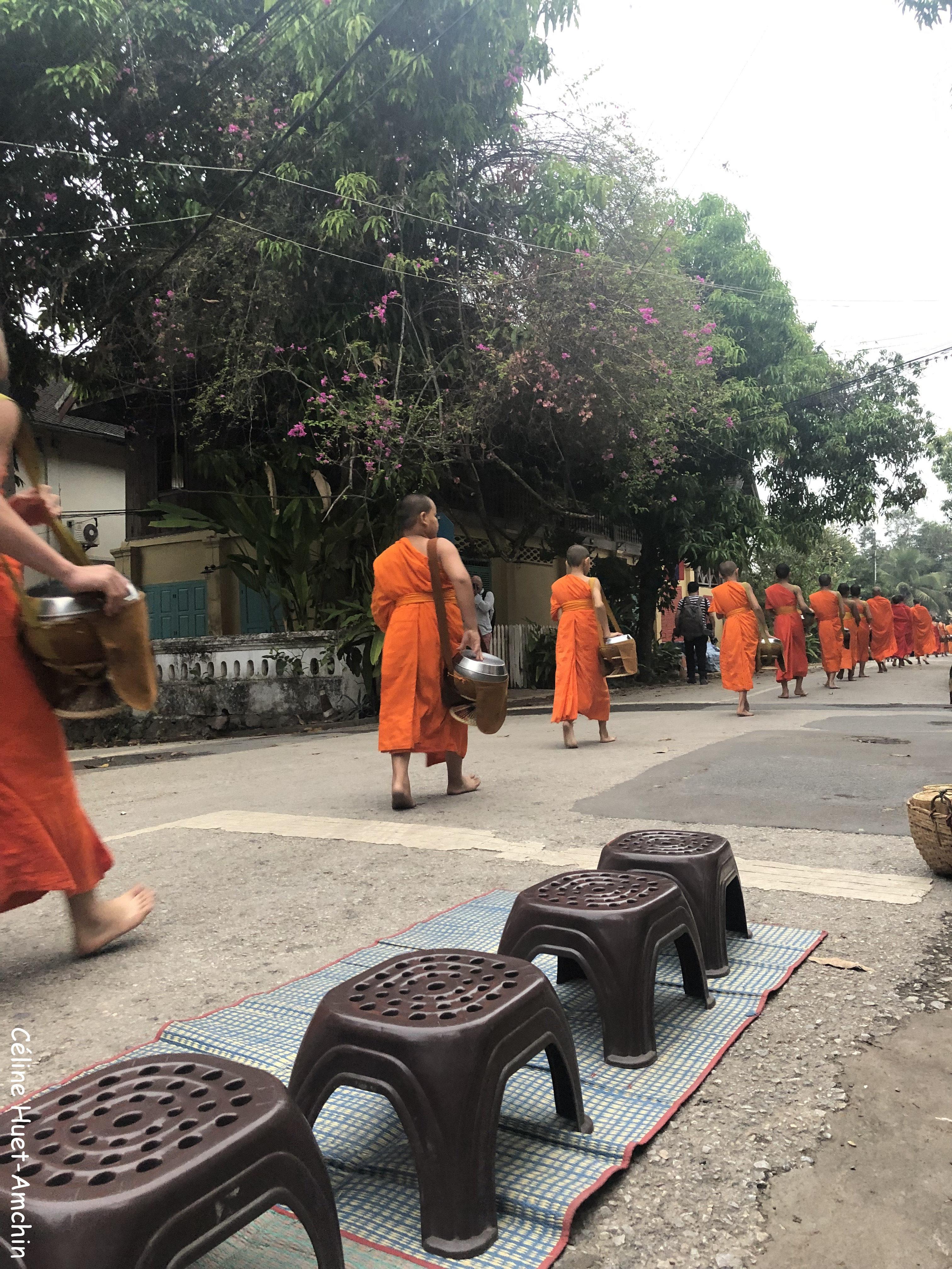 Cérémonie d'offrande aux monks Luang Prabang Laos Asie (à partir de 6h et jusqu'à 6h30)