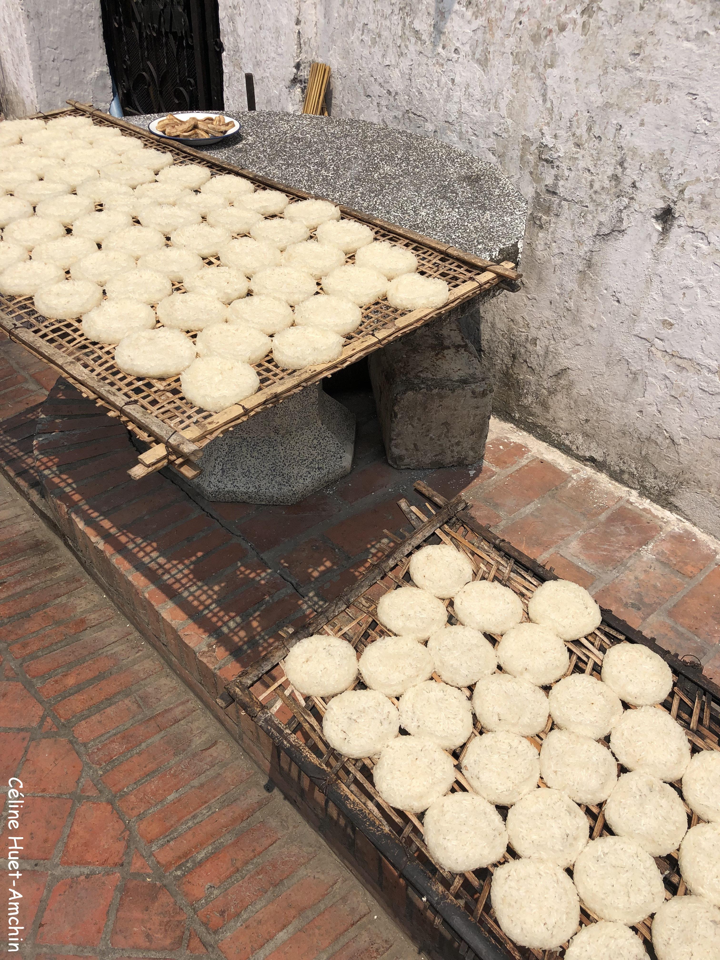 Riz qui sèche au soleil Luang Prabang Laos Asie